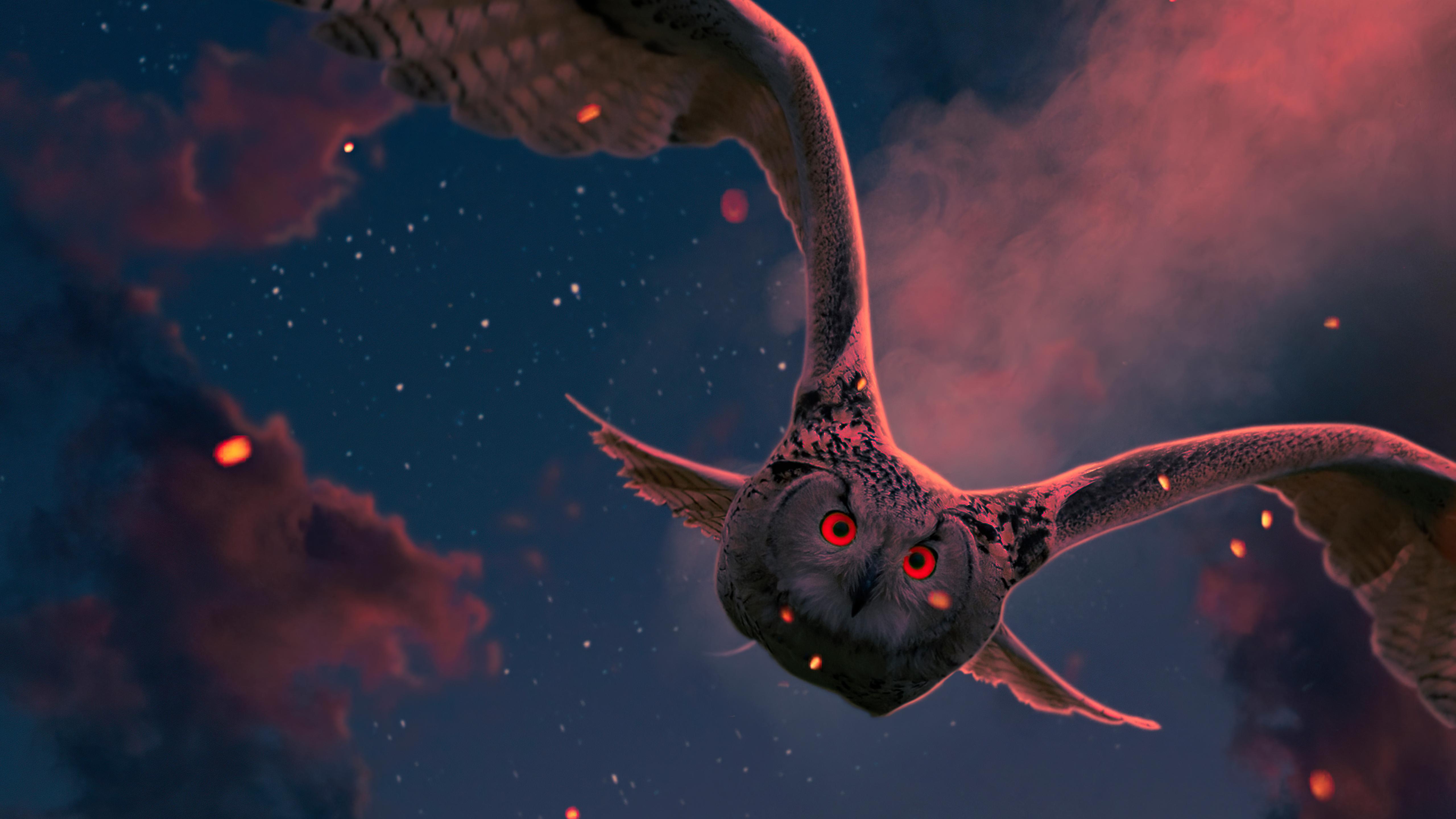 owl-red-eyes-5k-mf.jpg