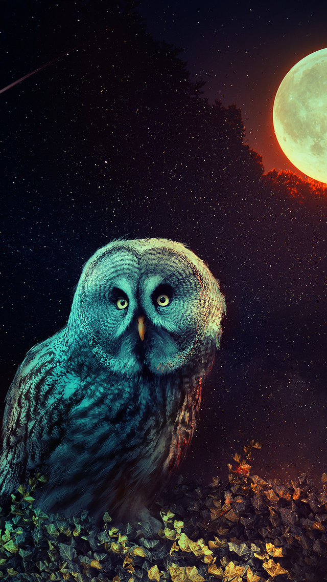 owl-the-night-guard-tc.jpg