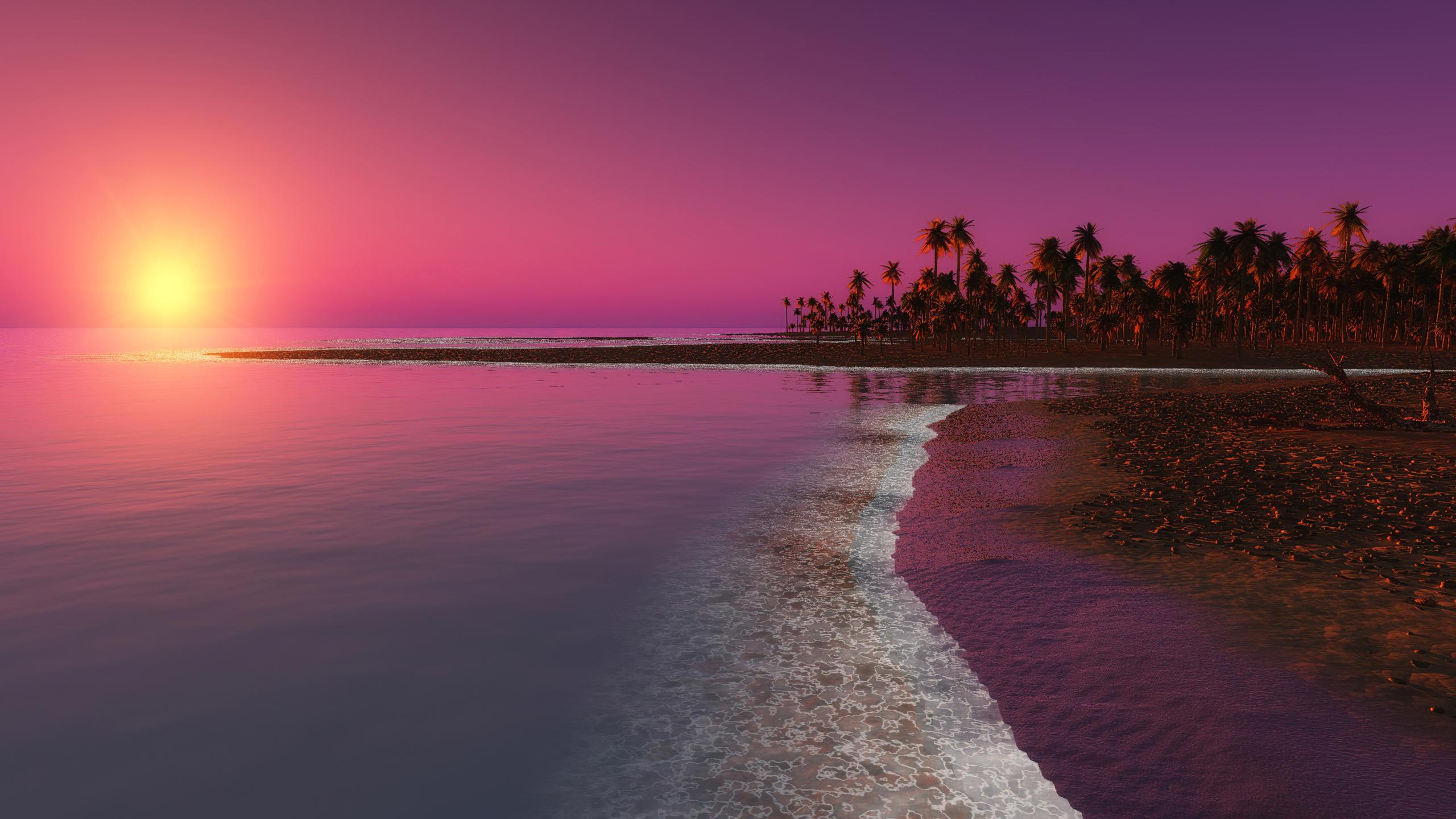 palm-trees-sunset-digital-nature-4k-ho.jpg