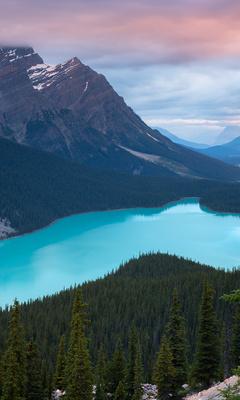 peyto-lake-canada-mountains-4k-tj.jpg
