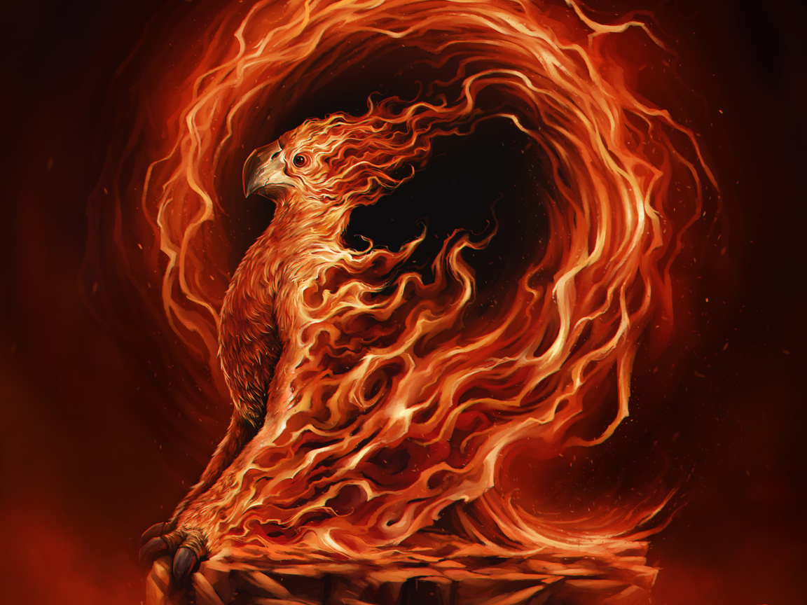 phoenix-illustration-ad.jpg