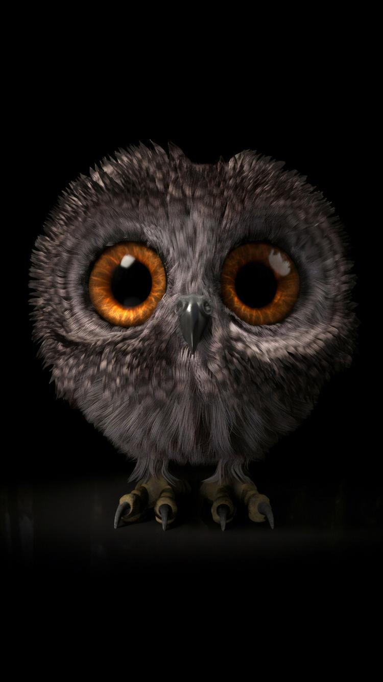 pinfeather-fluffy-owl-4k-po.jpg