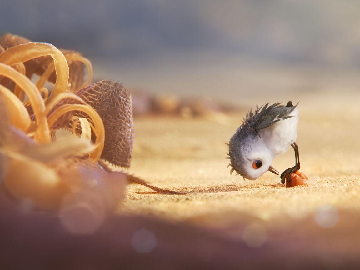 piper-animated-movie-pic.jpg