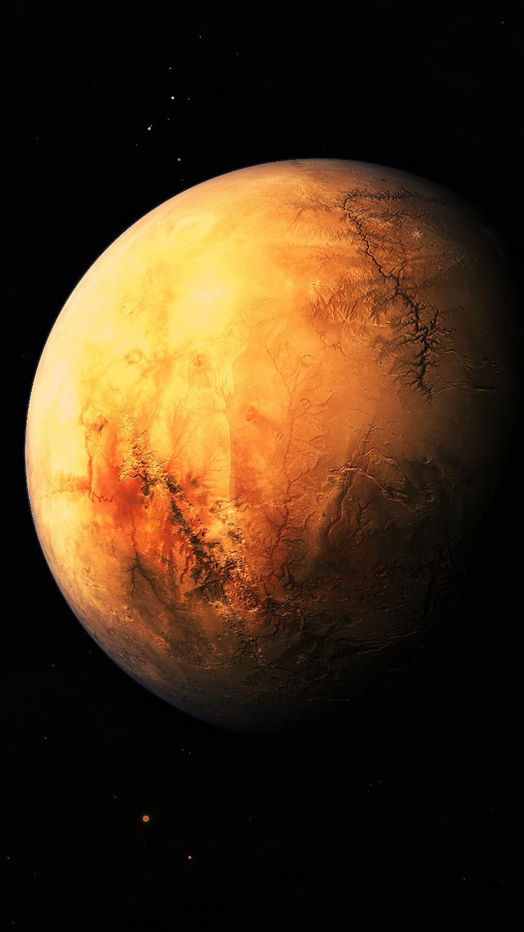 planet-branches-4k-5s.jpg