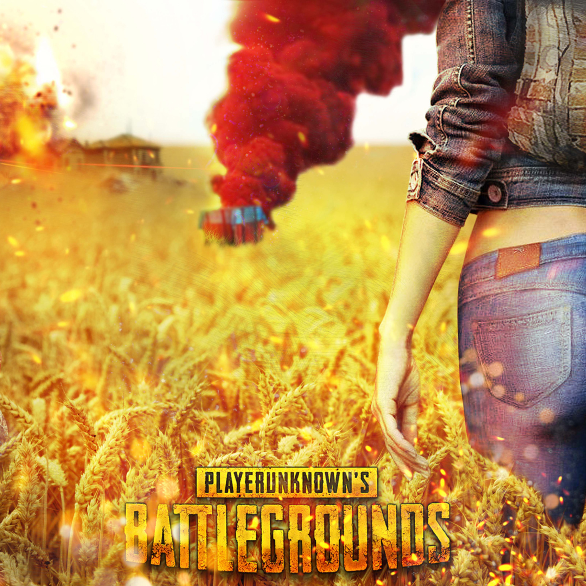 2048x2048 Playerunknowns Battlegrounds 1080P Ipad Air HD