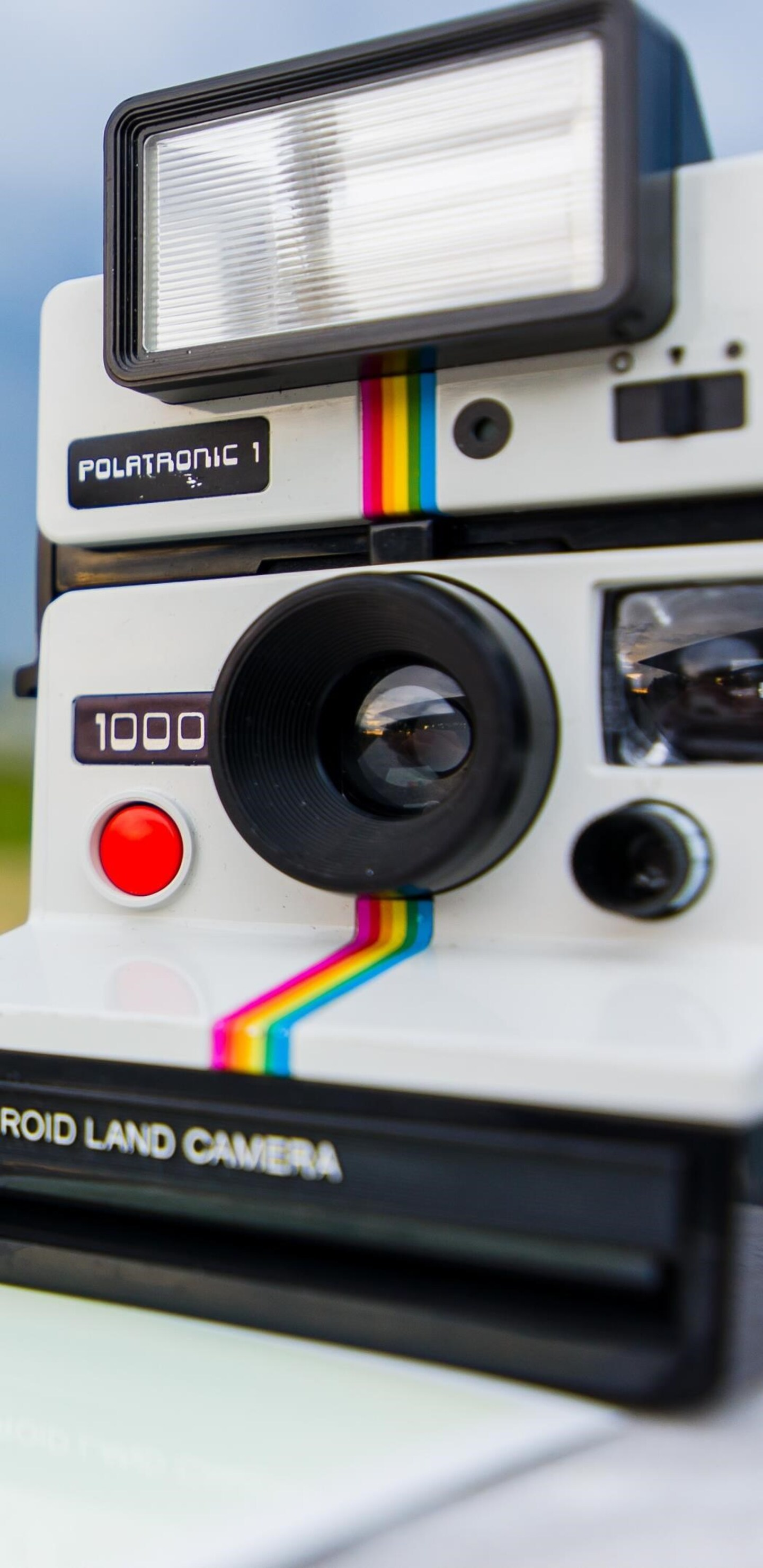 polaroid-land-camera-new.jpg
