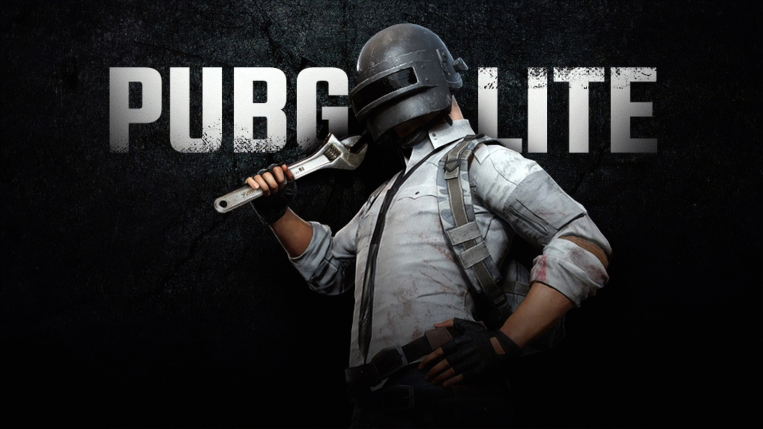 2560x1440 Pubg Lite 1440p Resolution Hd 4k Wallpapers Images Backgrounds Photos And Pictures