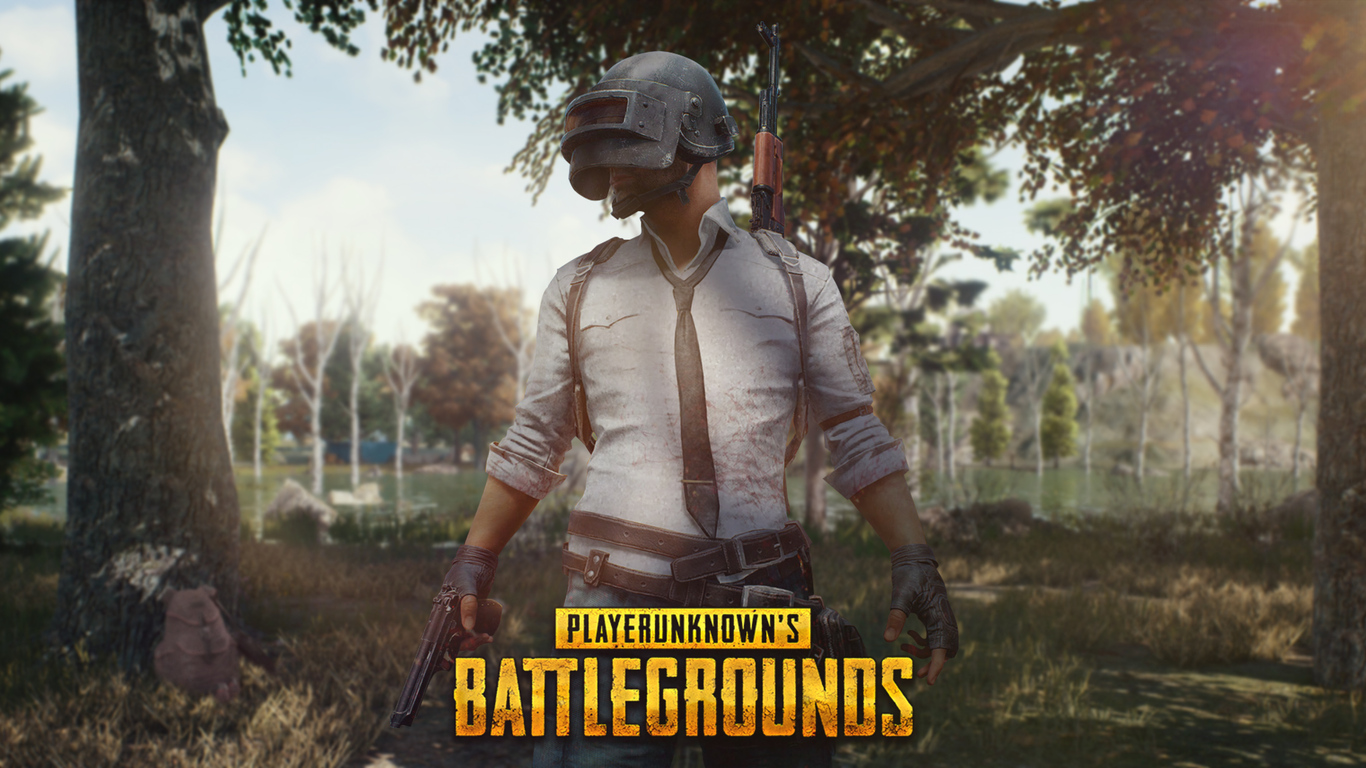 Pubg Game Wallpaper 3d