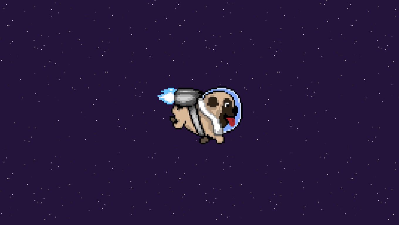pug-dog-minimalism-img.jpg