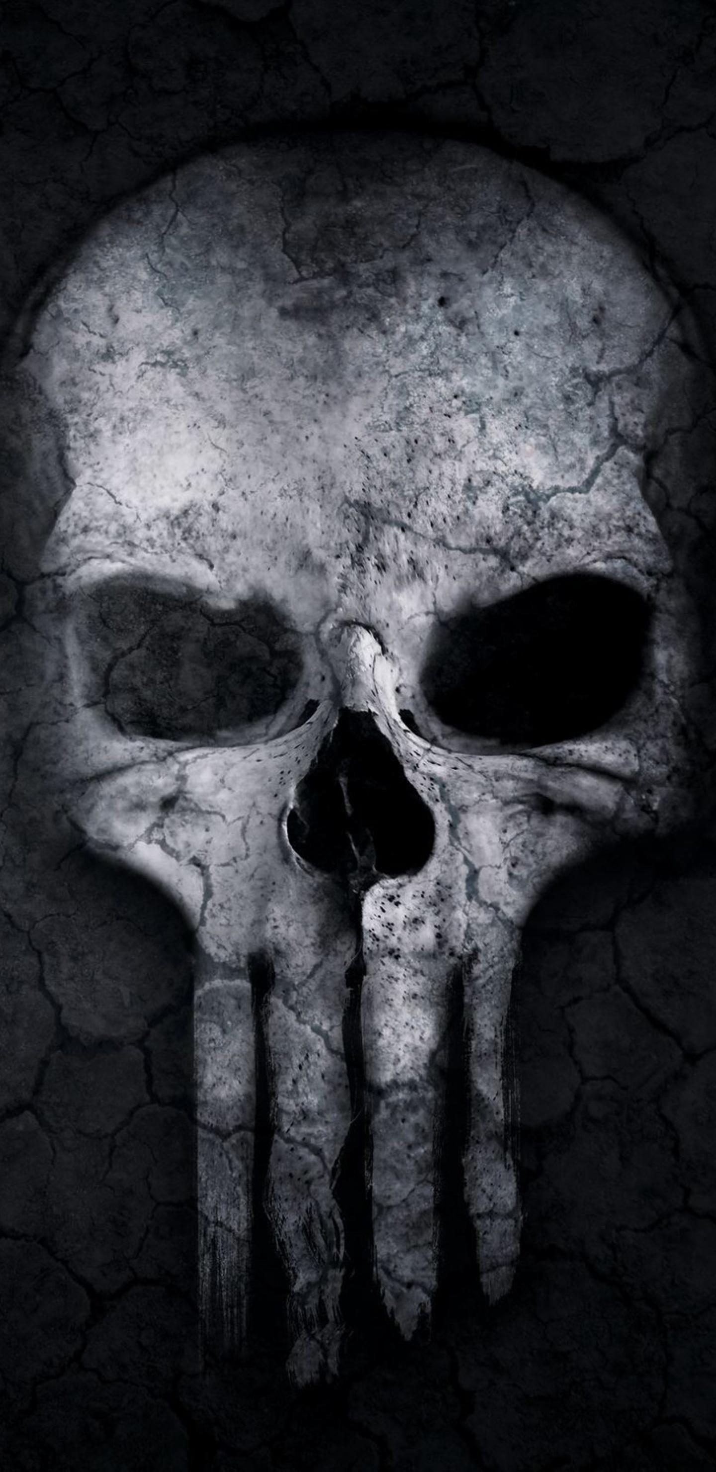 1440x2960 Punisher Skull Artwork Samsung Galaxy Note 98 S9