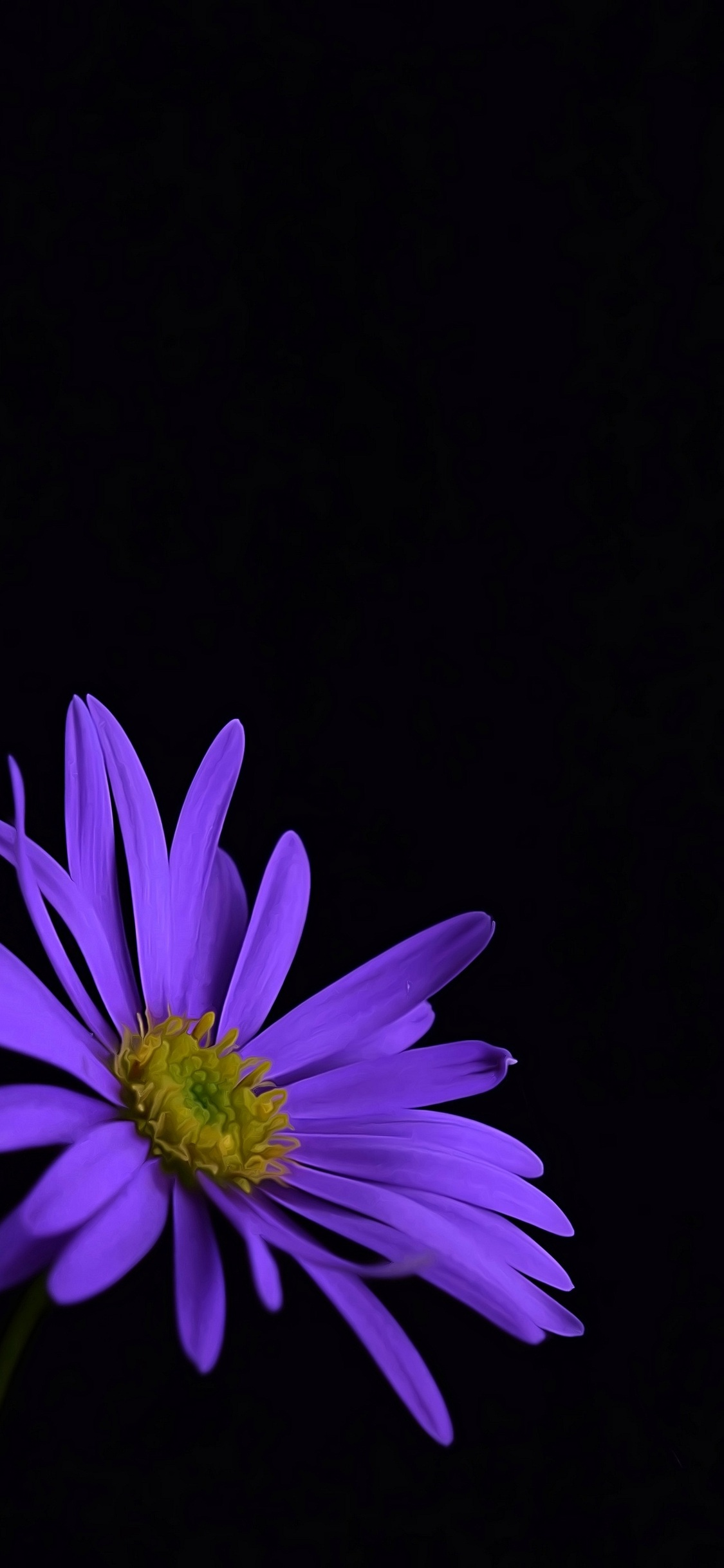 Purple Flower Blossom (Iphone XS,Iphone 10,Iphone X)