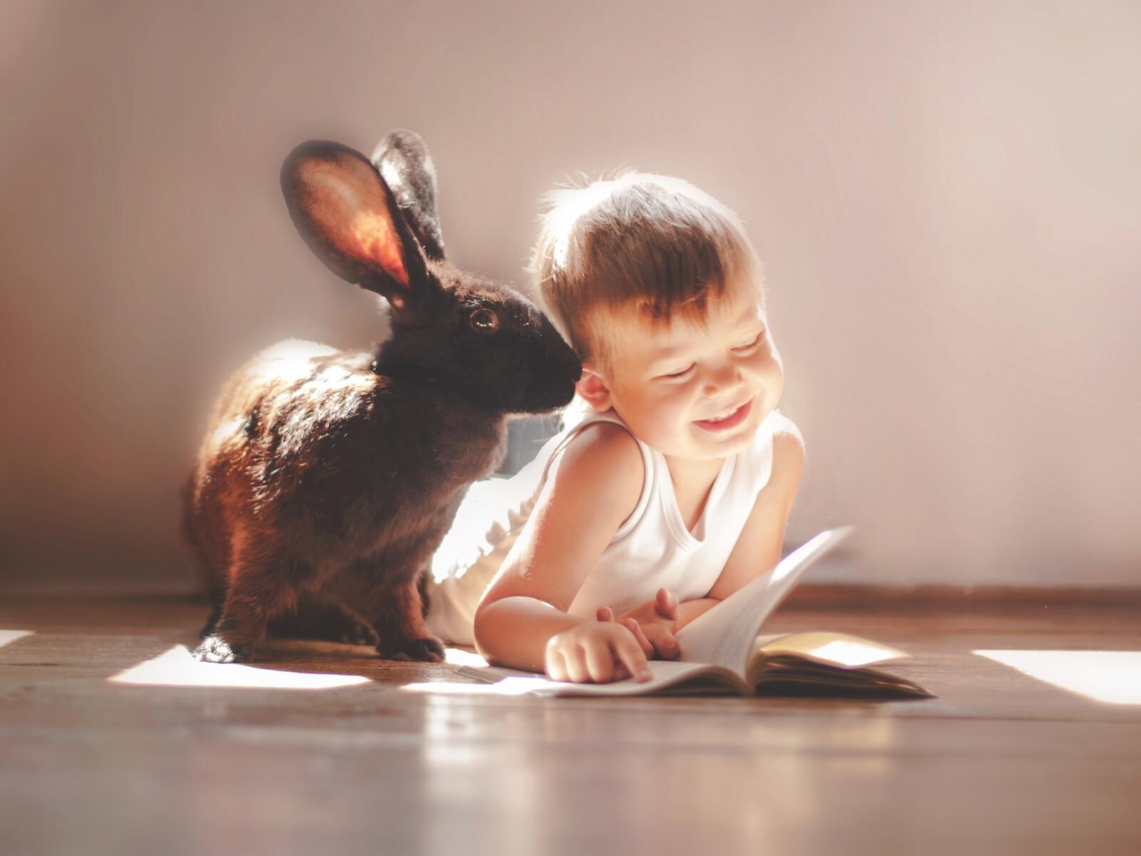 rabbit-and-children-cute-4k.jpg