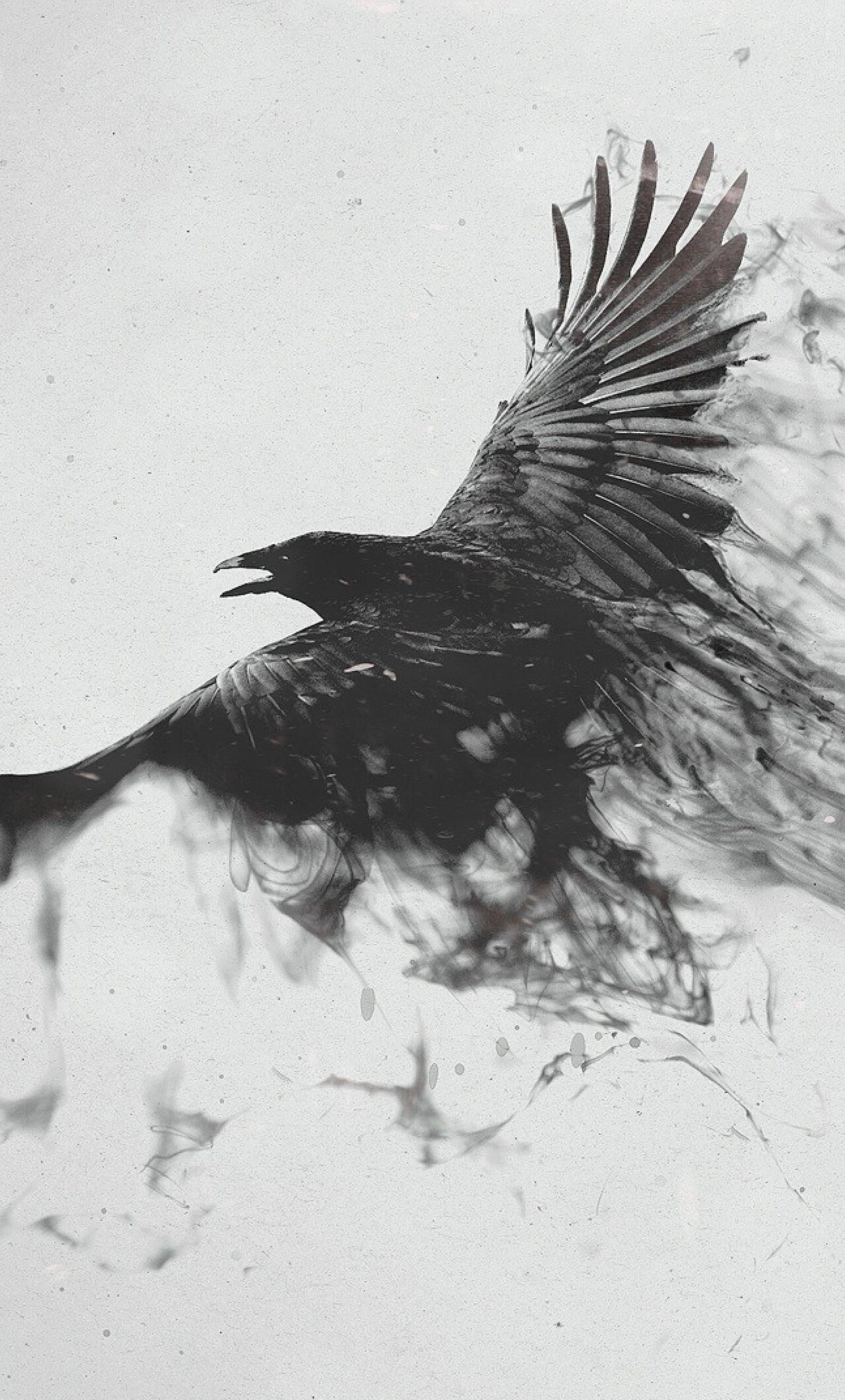 1280x2120 Raven Bird Art IPhone 6 HD 4k Wallpapers Images