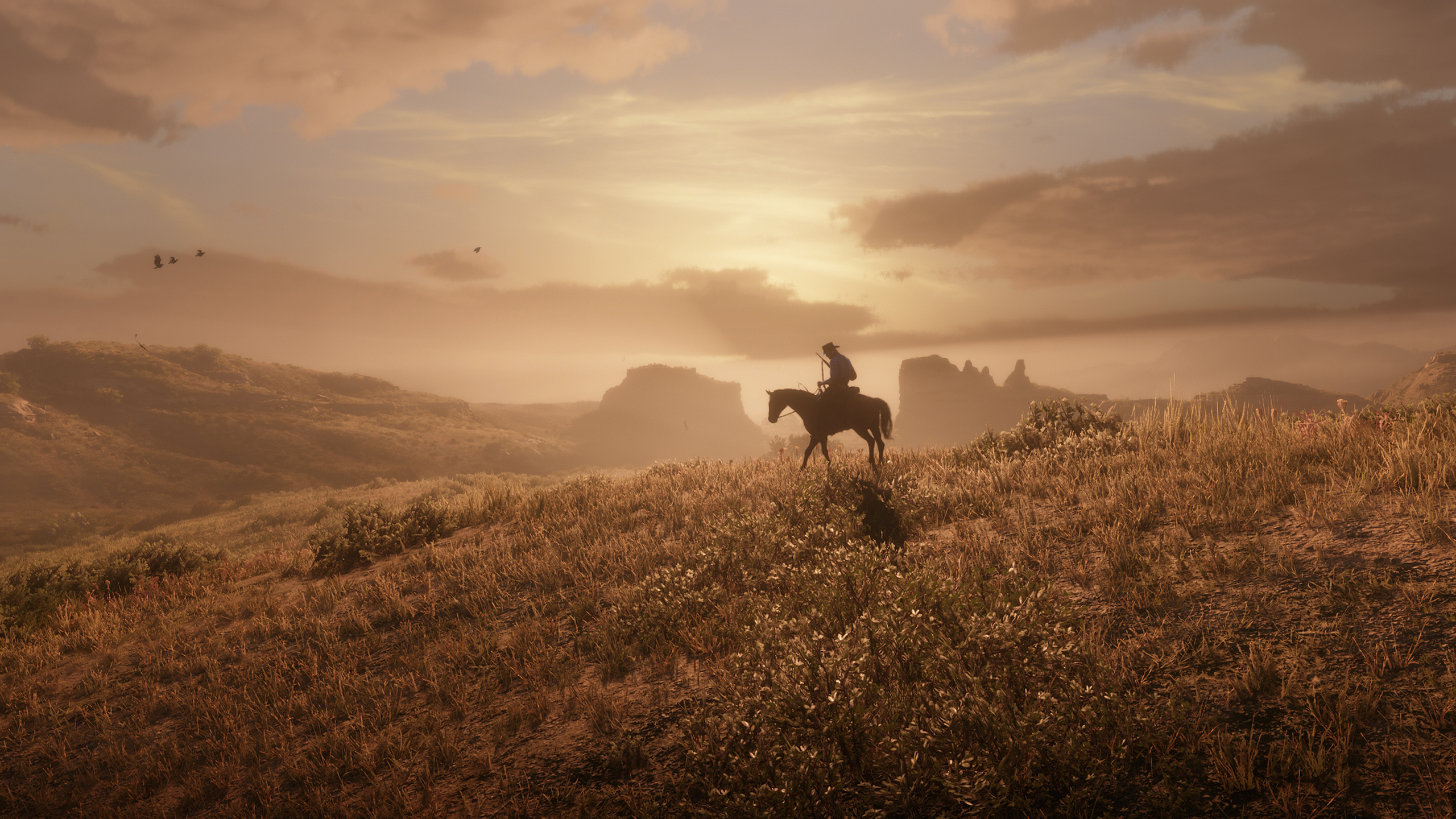 2560x1440 Red Dead Redemption 2 Xbox One 4k 1440P ...