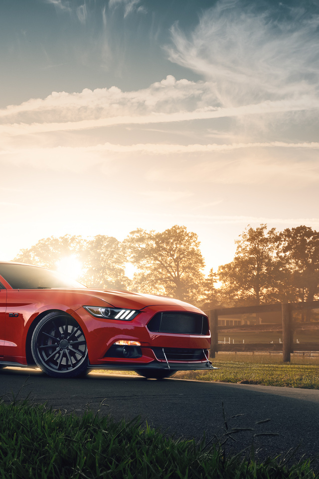 red-ford-mustang-2021-4k-cl.jpg