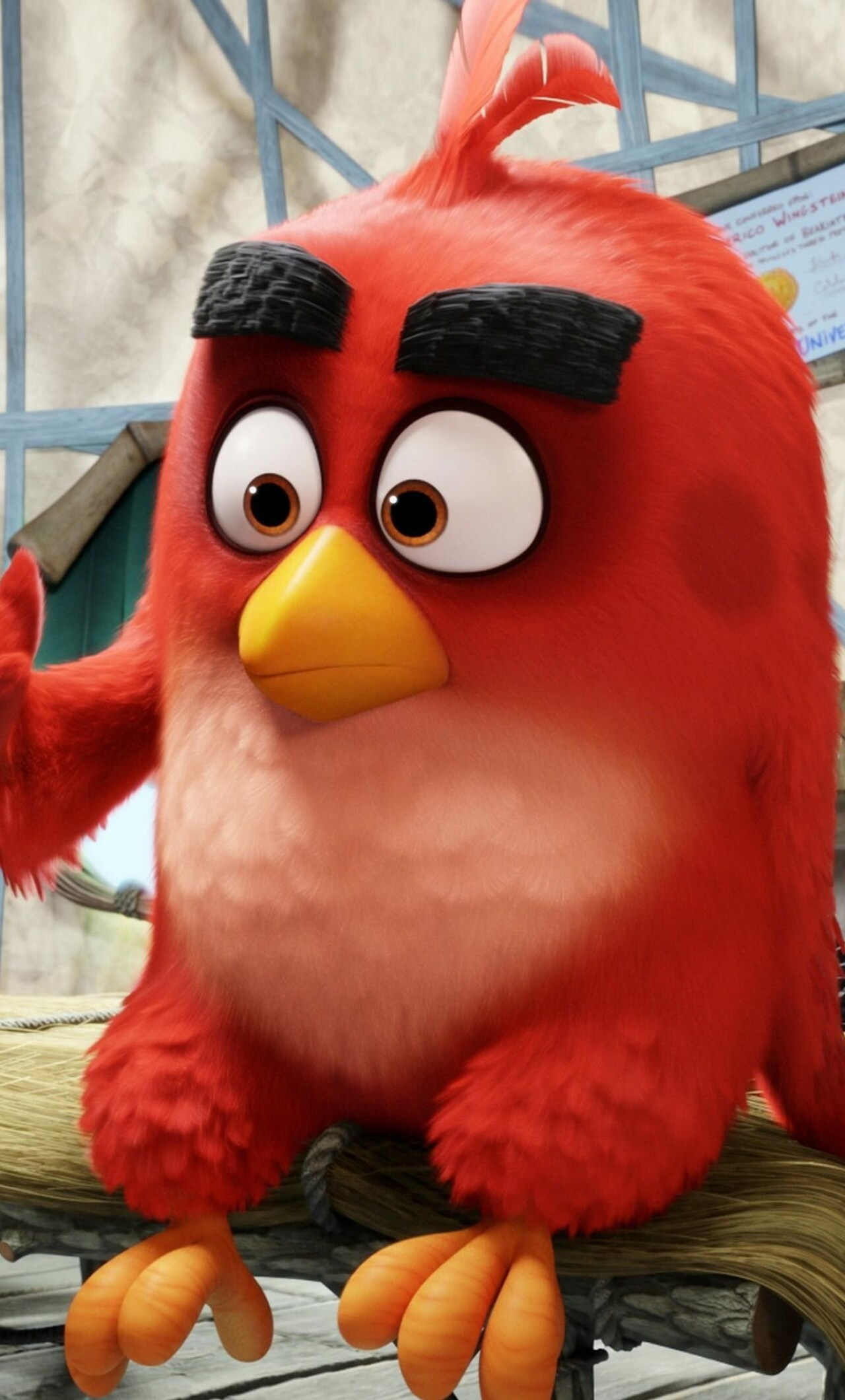 1280x2120 Red The Angry Birds Iphone 6 Hd 4k Wallpapers Images