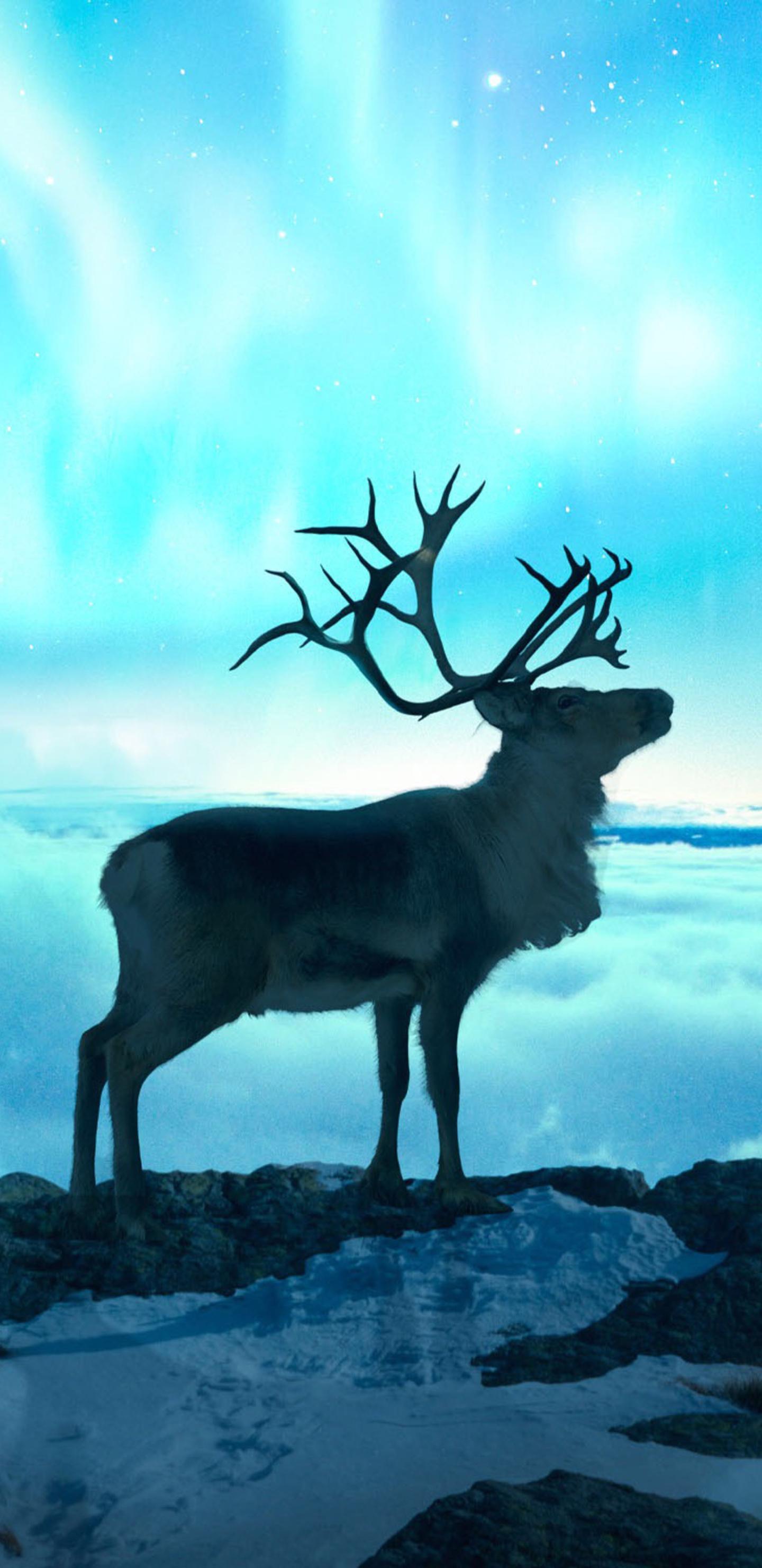 reindeer-fantasy-art-7n.jpg