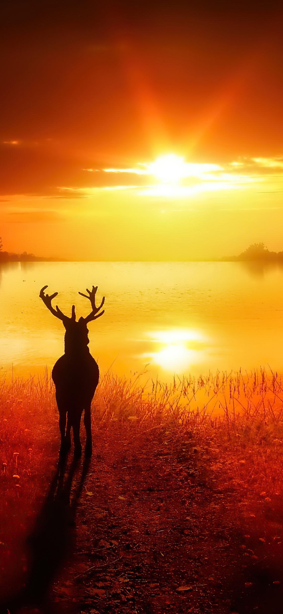 reindeer-lost-in-nature-4k-9o.jpg