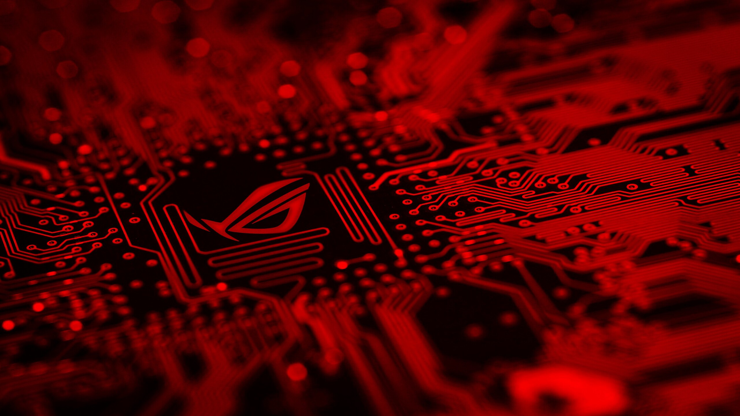 2560x1440 Republic Of Gamers Motherboard Red Background Logo