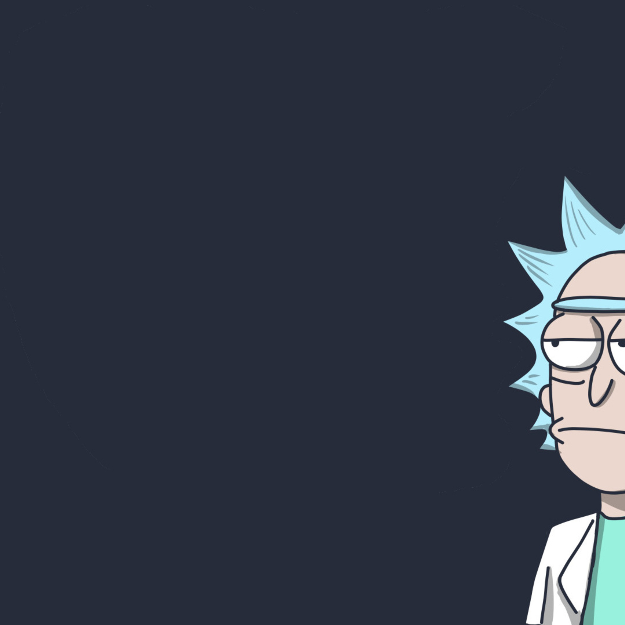 2048x2048 Rick In Rick And Morty Ipad Air Hd 4k Wallpapers Images