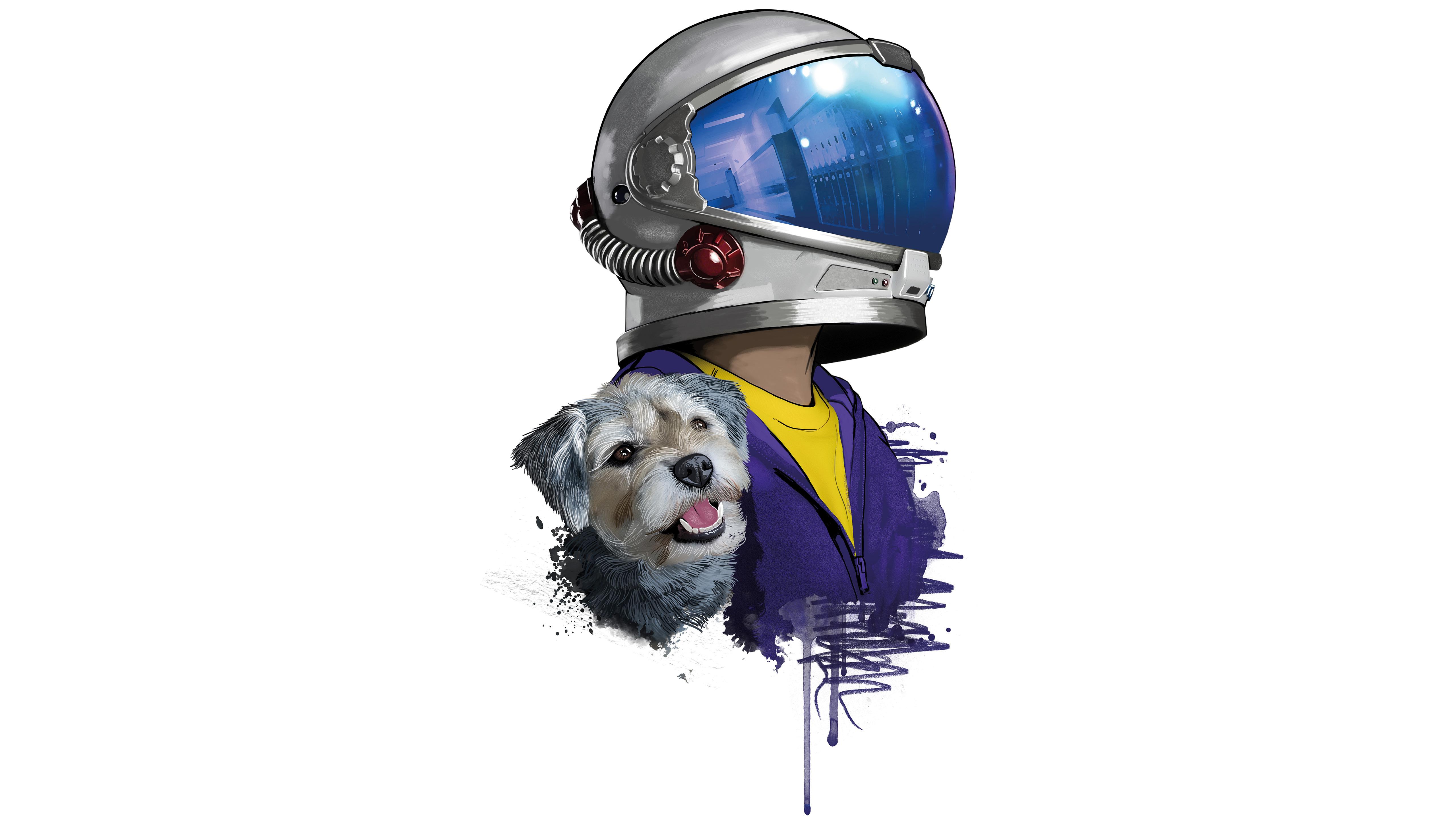 rider-helmet-dog-minimal-5k-3t.jpg