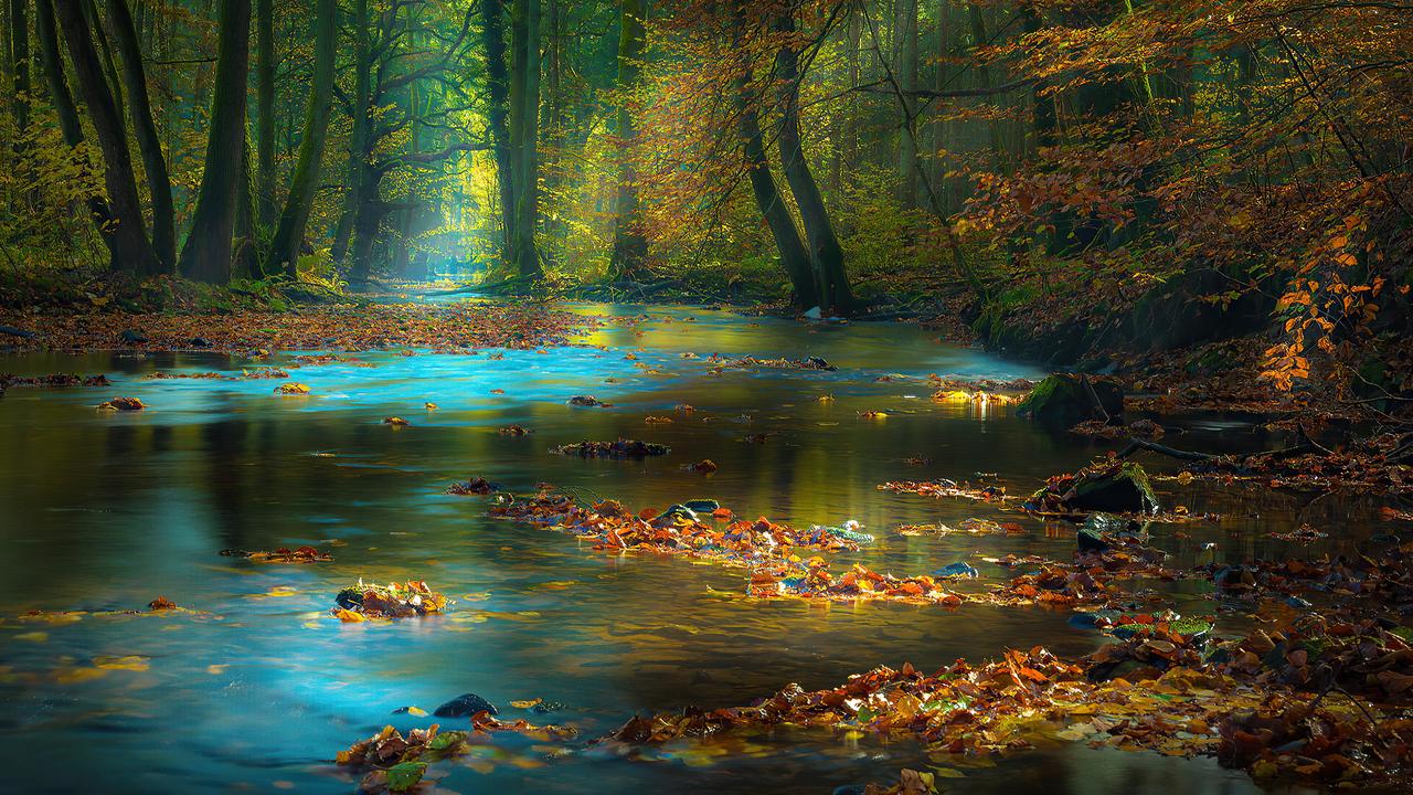 river-sunbeam-autumn-4k-av.jpg