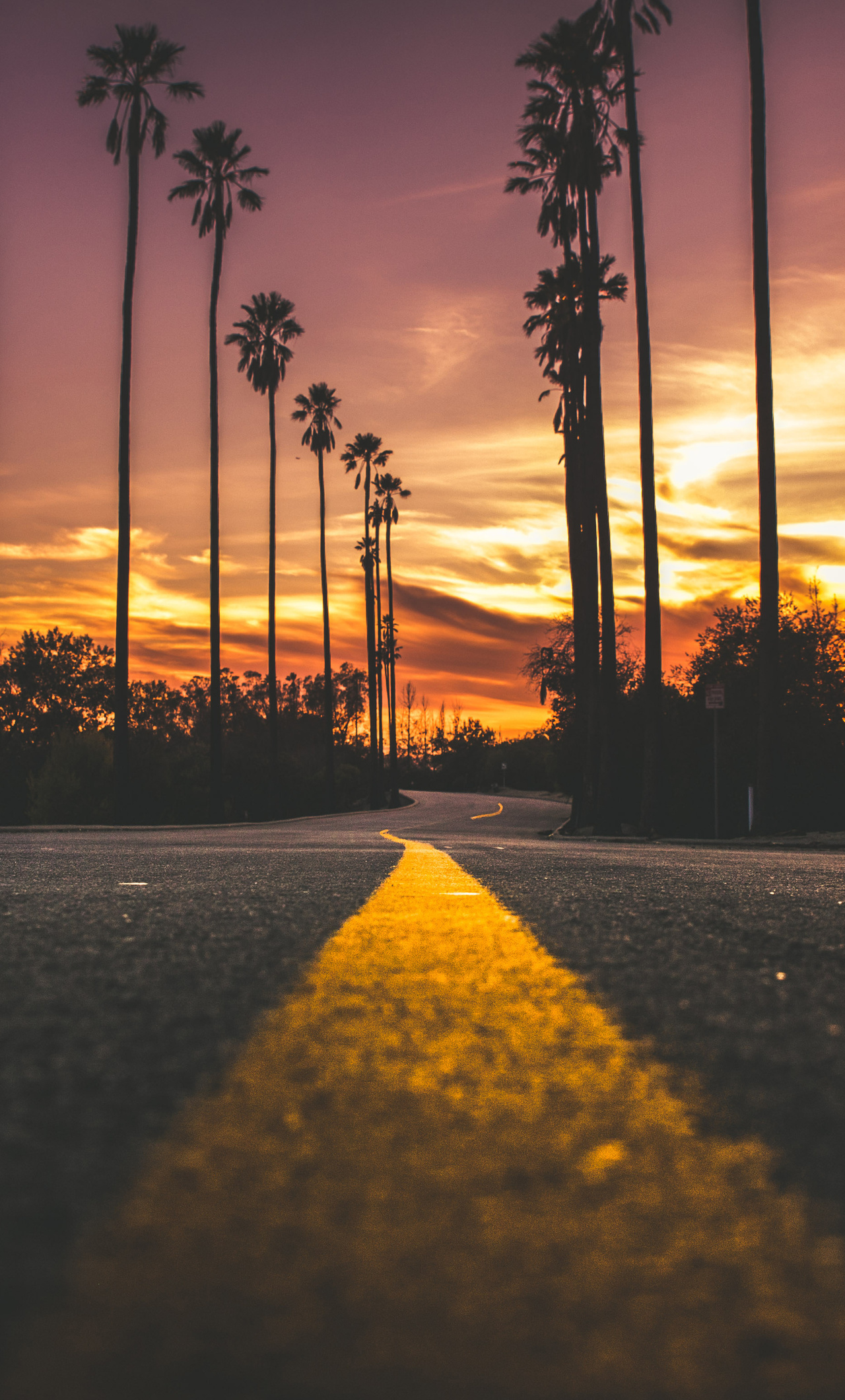 Road In City During Sunset Go