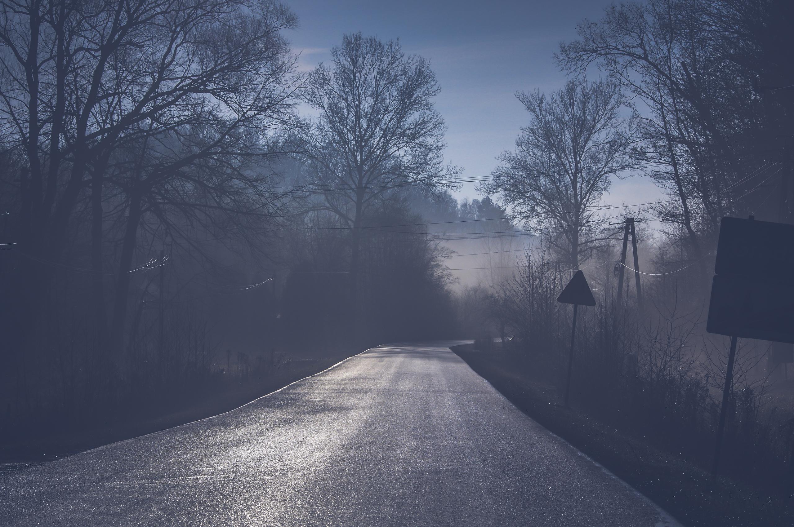 road-tree-mist-5k-f5.jpg