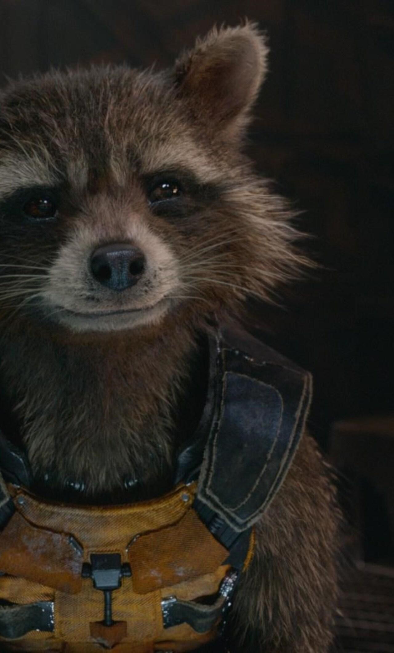 Rocket Raccoon Guardians Of The Galaxy 4k