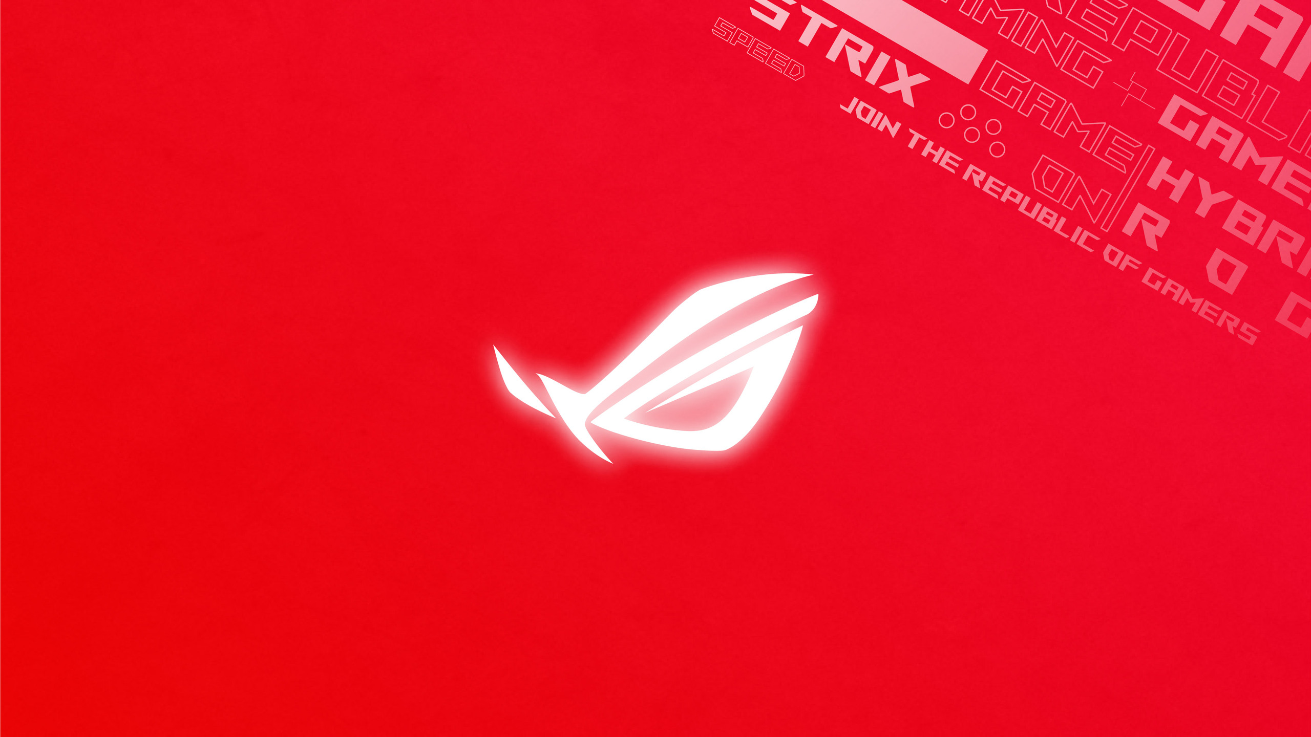 2560x1440 Rog Logo Red Background 4k ...