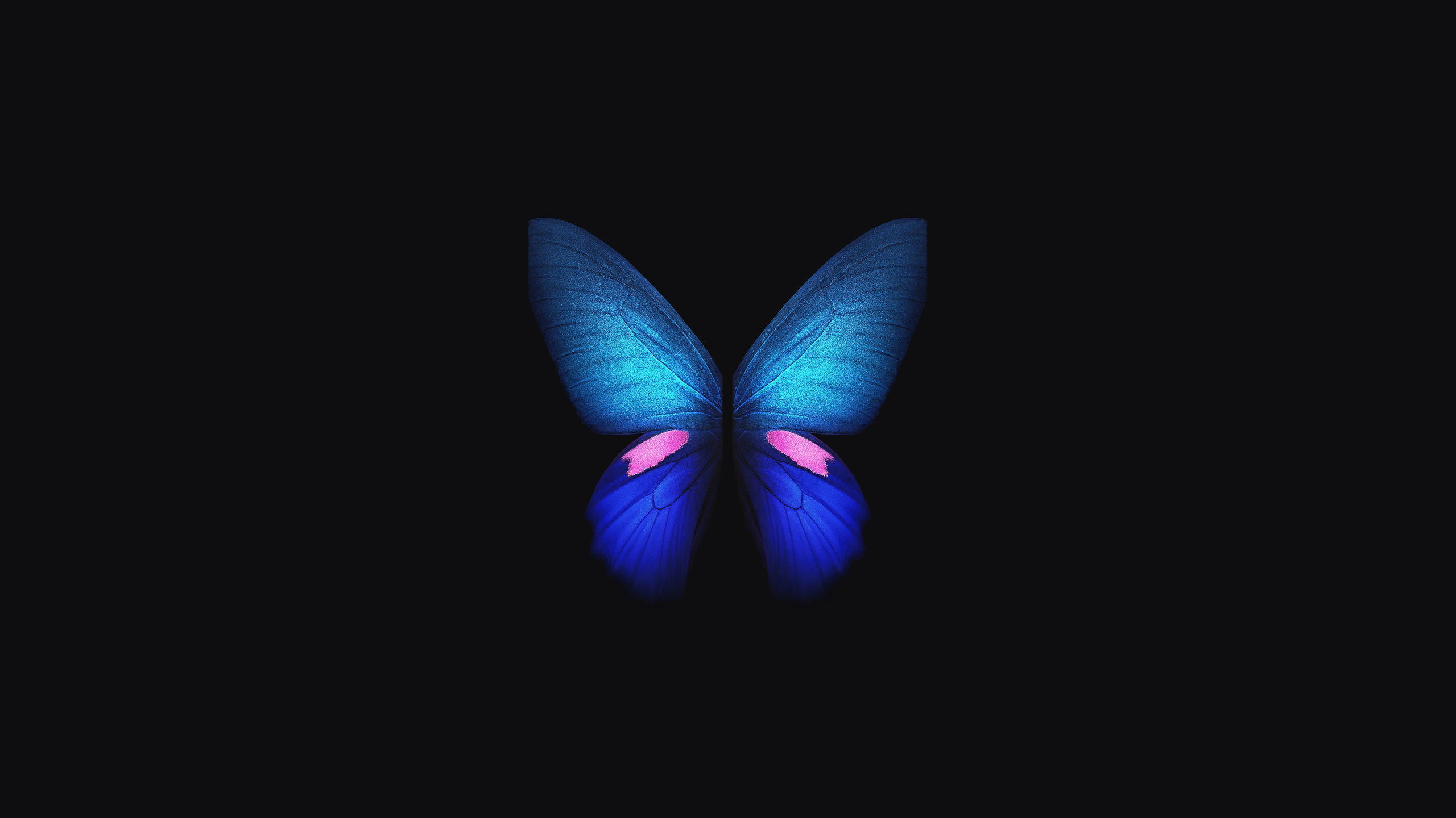 2560x1440 Samsung Galaxy Fold Stock 1440p Resolution Hd 4k Wallpapers Images Backgrounds Photos And Pictures
