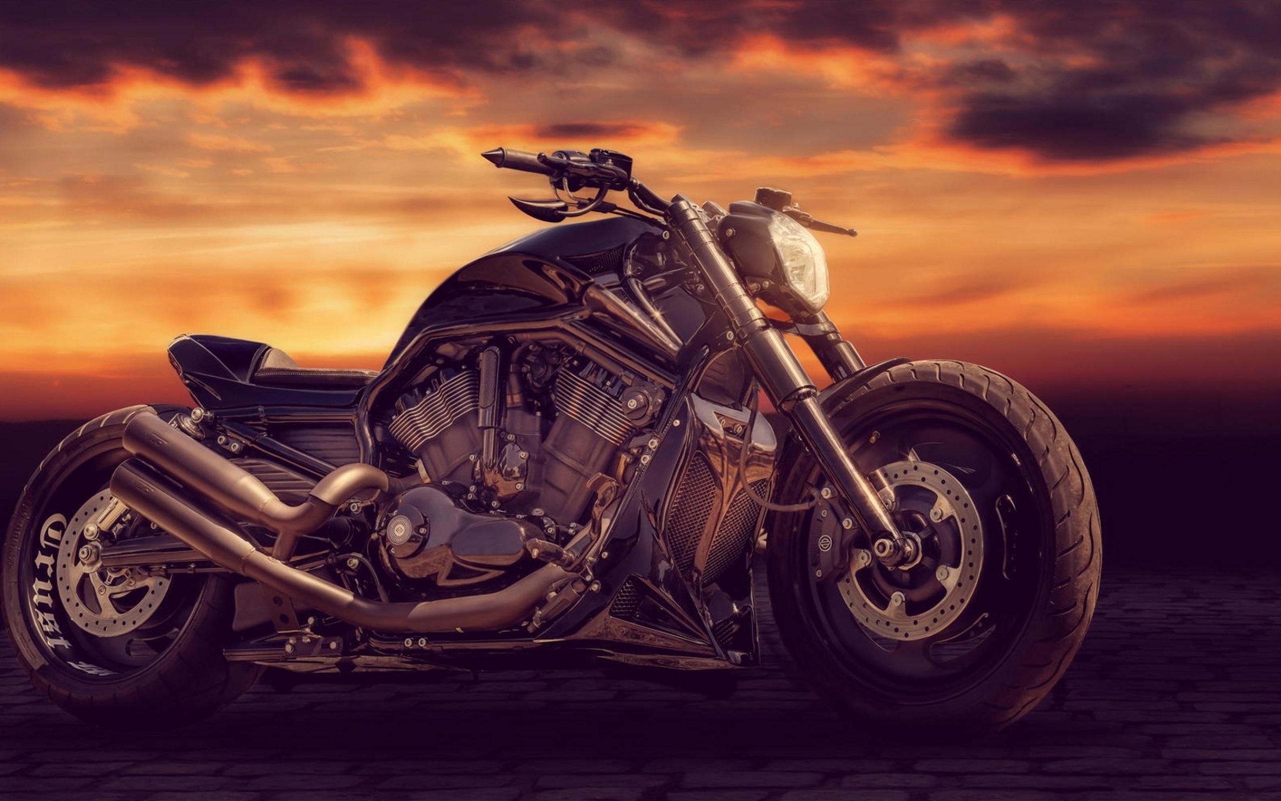 sandra-dombrovsky-bike.jpg