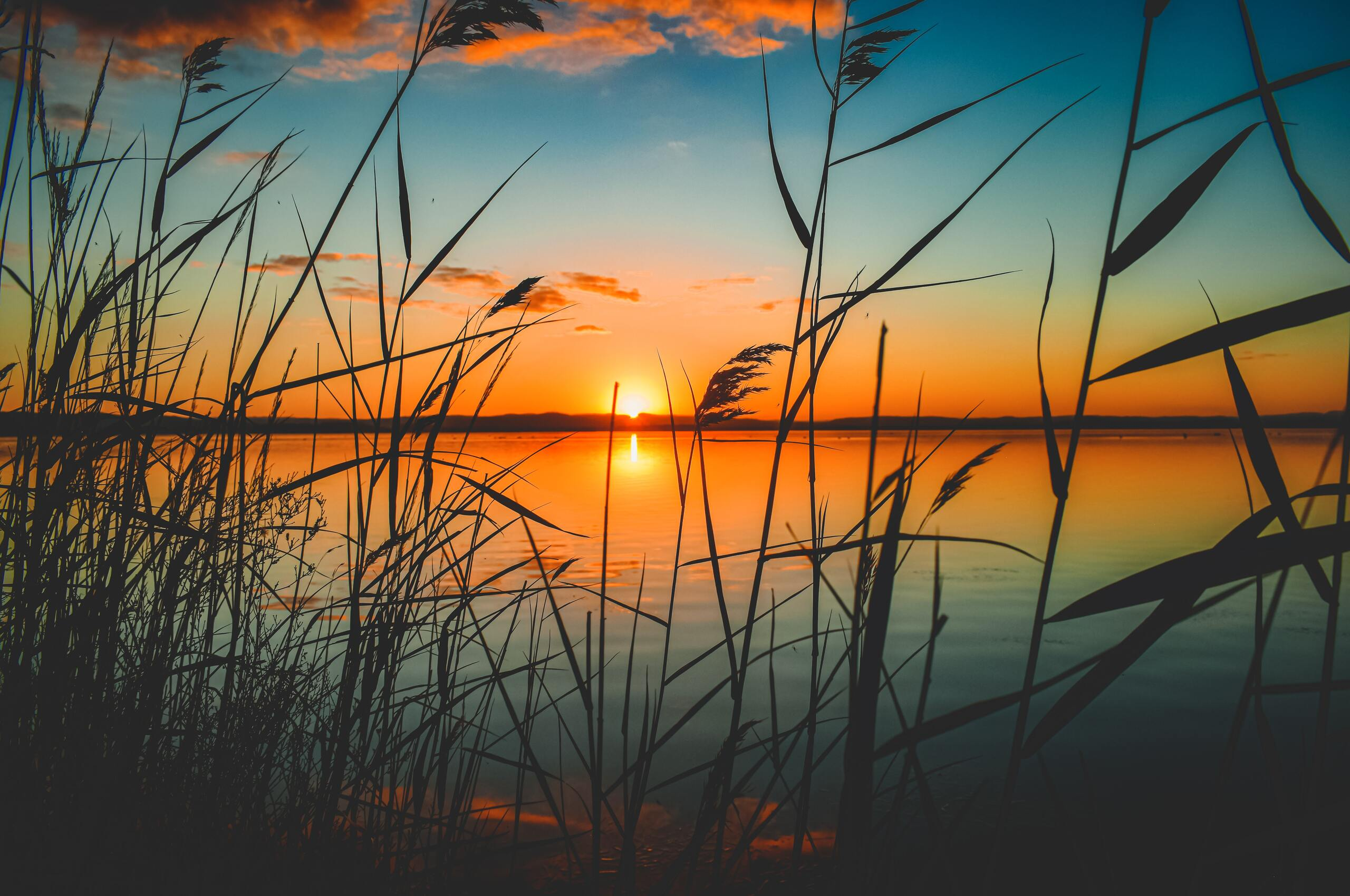 scenic-view-of-lake-during-sunset-5k-7n.jpg
