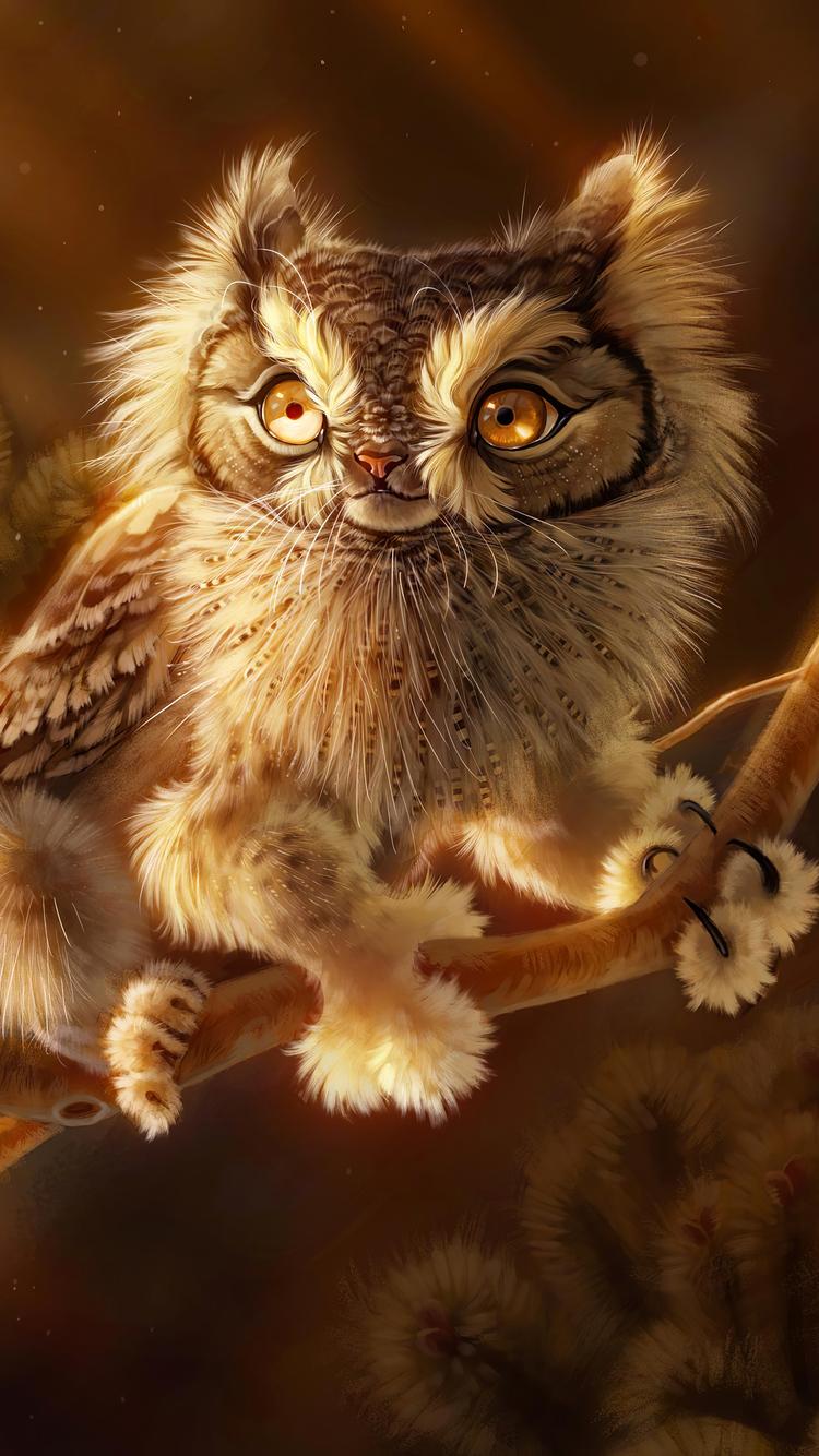 screech-owl-4k-2j.jpg