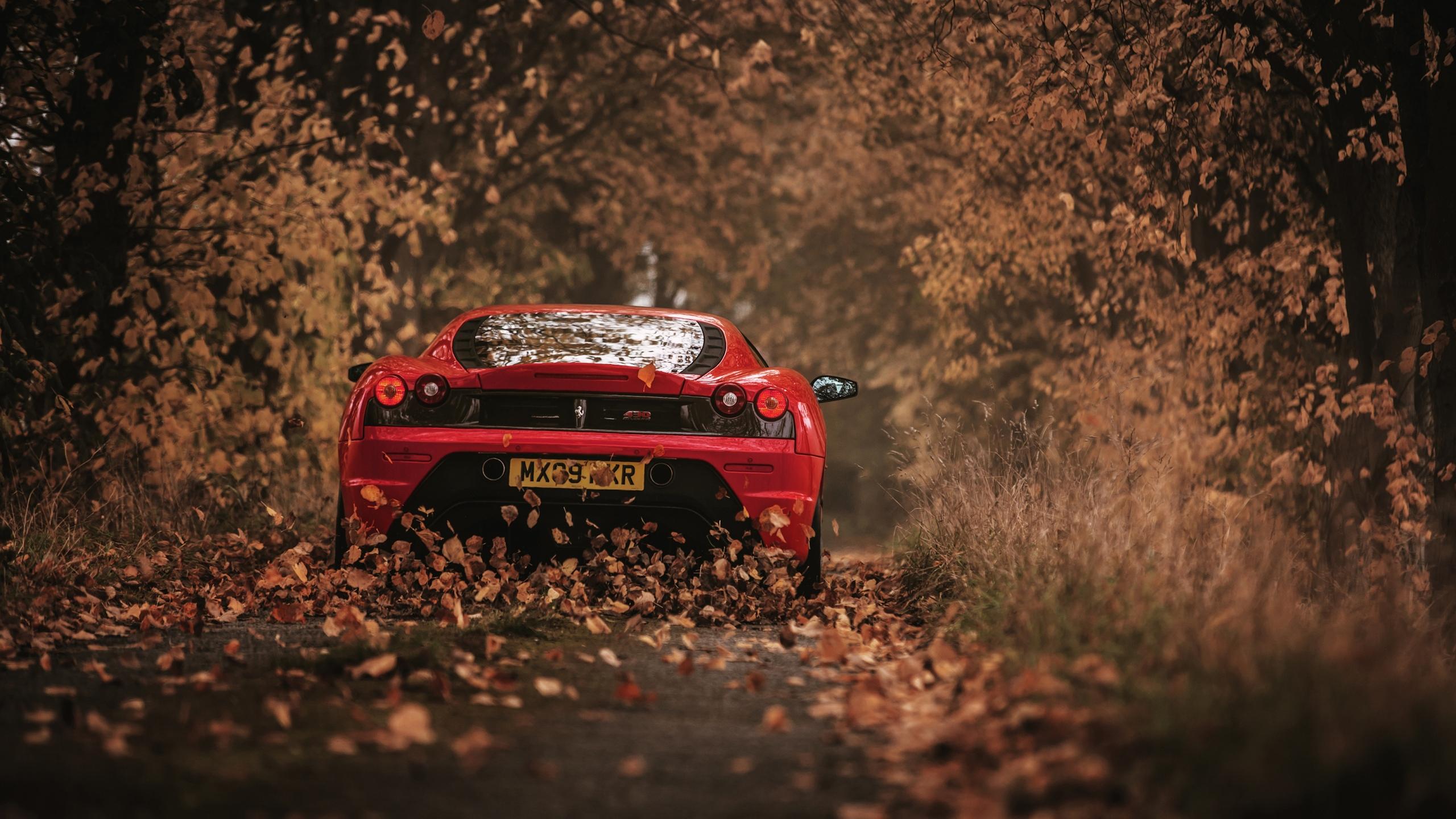 Download La Ferrari Hd Wallpaper 1440P  Gif