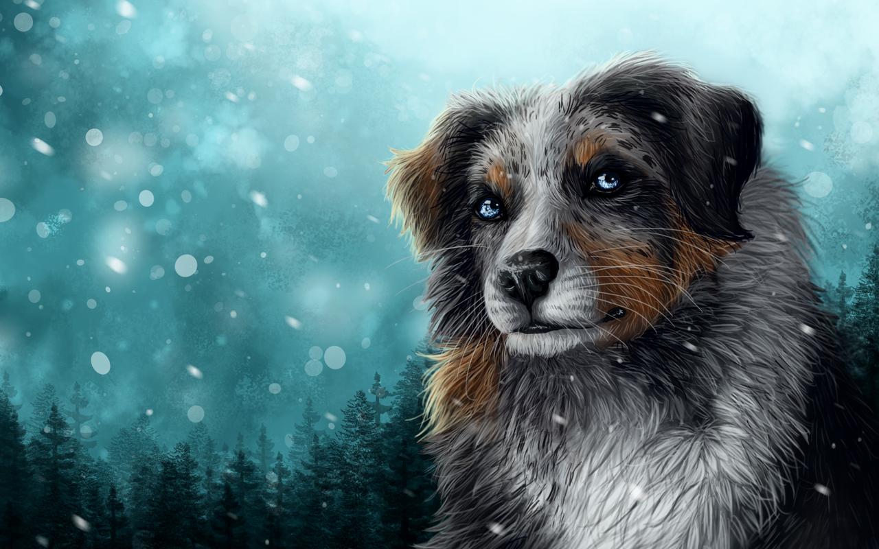 secret-santa-dog-snow-c9.jpg