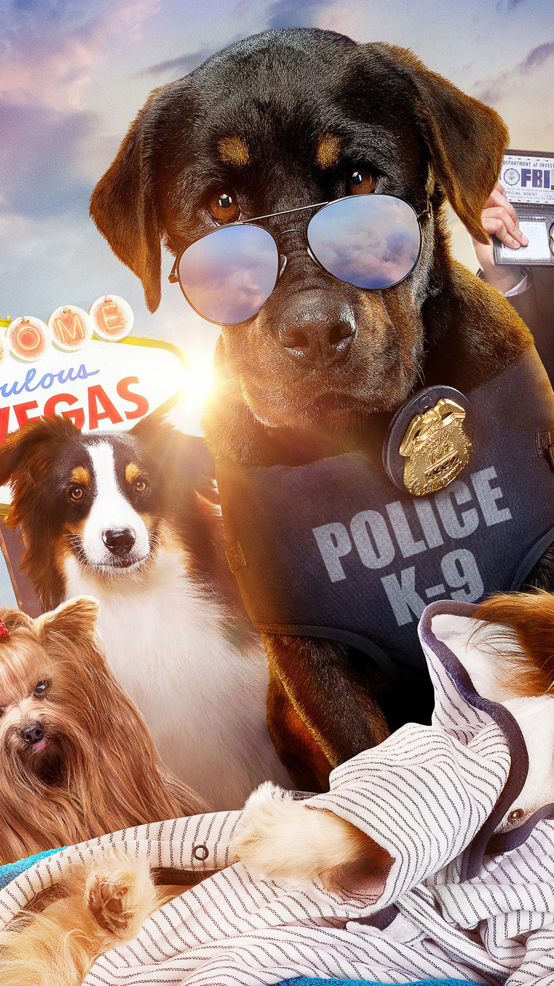 show-dogs-2018-wg.jpg