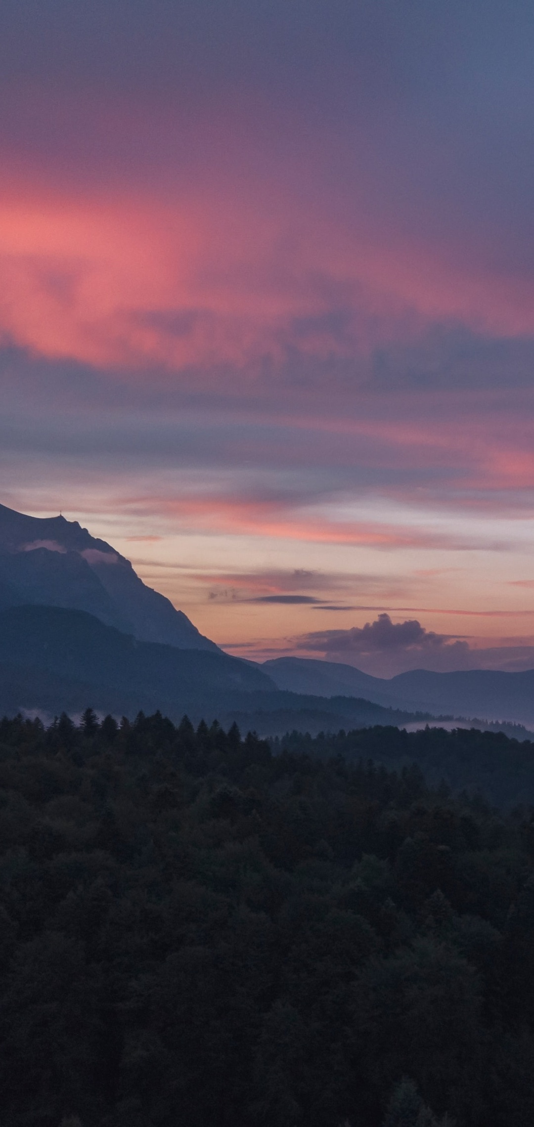 silhouette-trees-sunset-bj.jpg