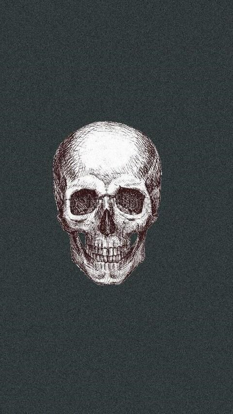 skull-art-3.jpg