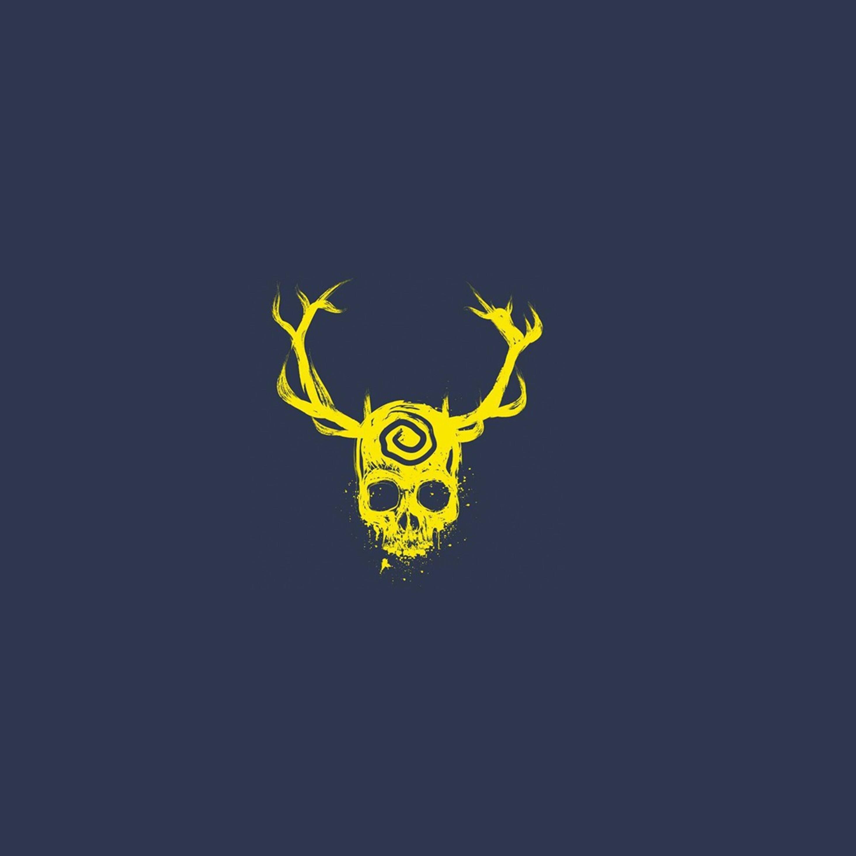 skull-minimalist-new.jpg