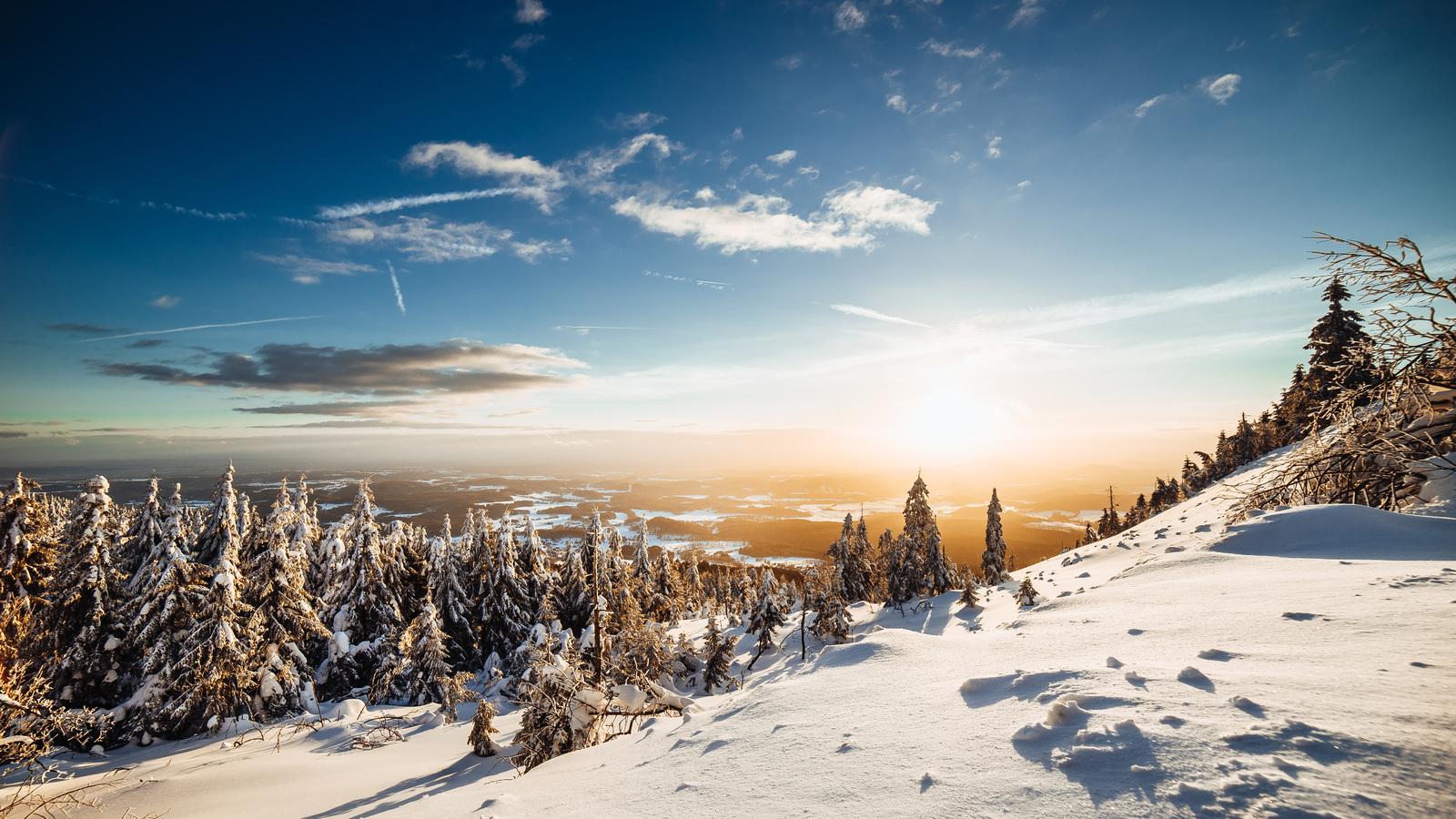 sky-snow-spruces-trees-5k-66.jpg