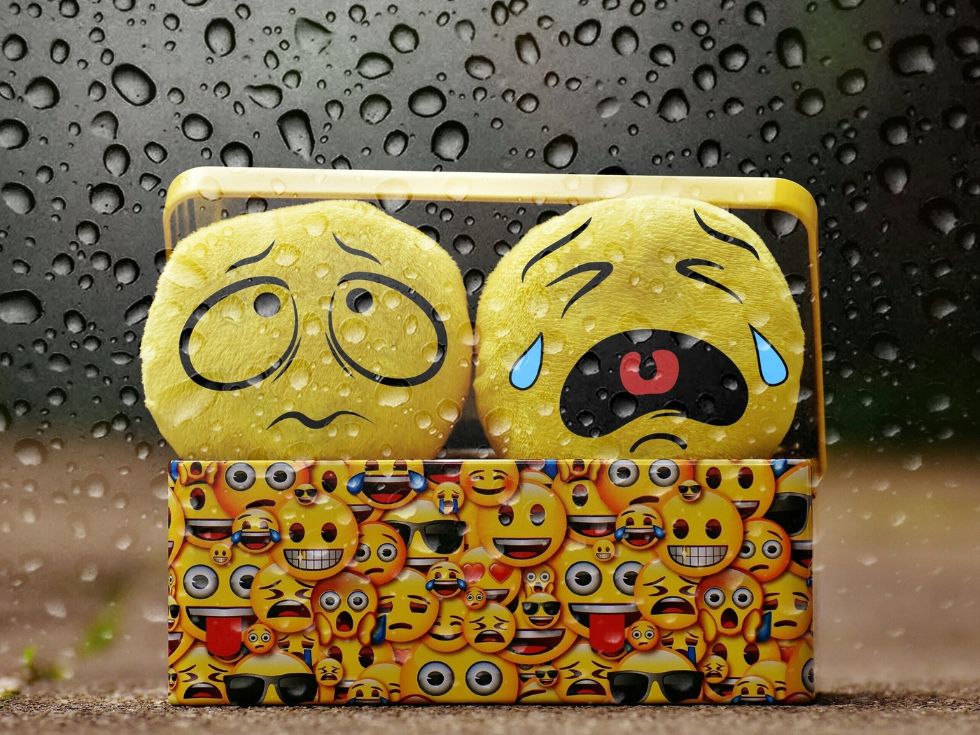 smile-cry-box-09.jpg