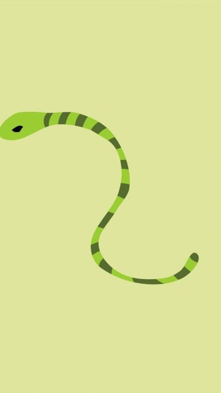 snake-minimalism-wallpaper.jpg
