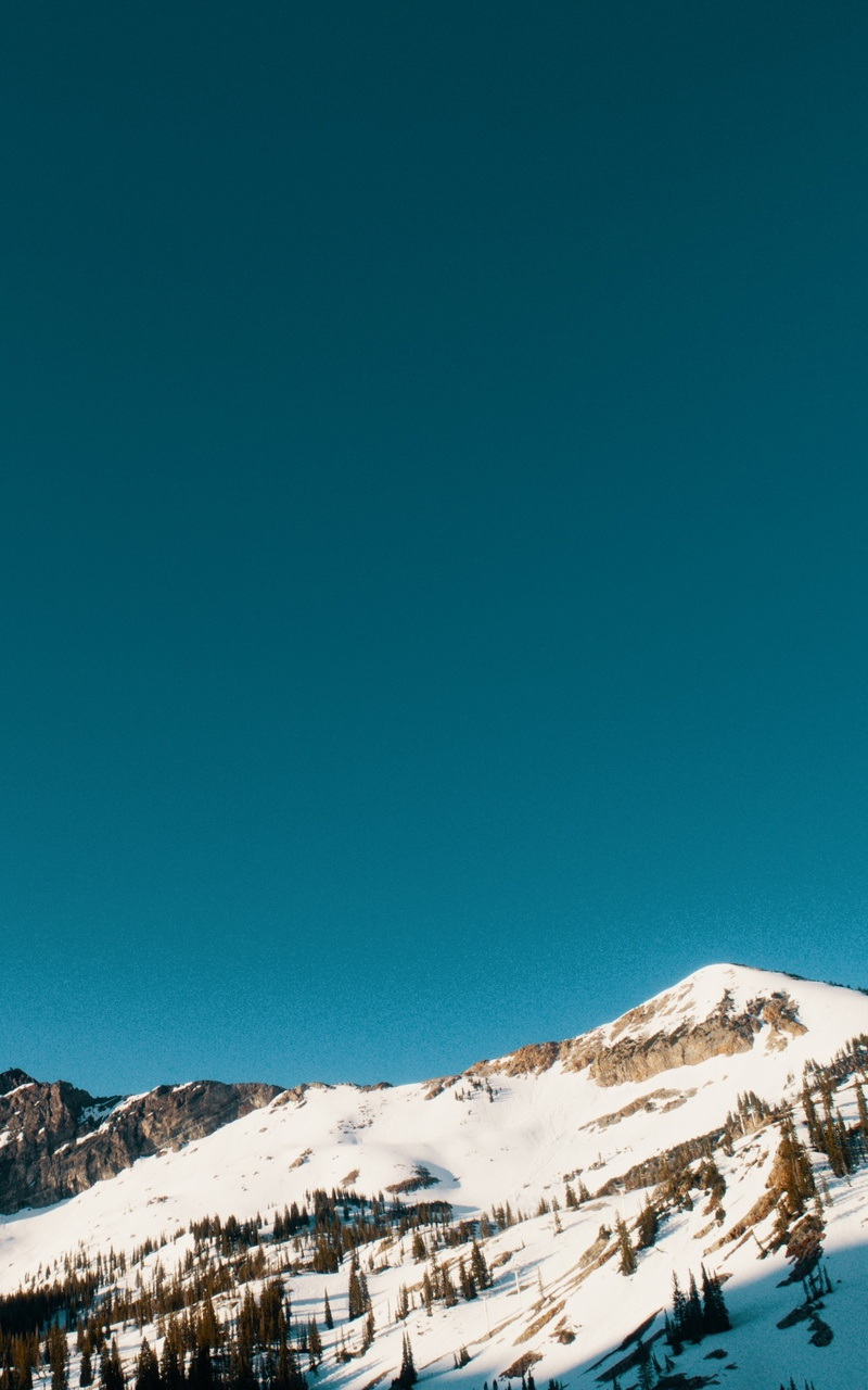 snow-capped-mountains-and-trees-5k-1k.jpg
