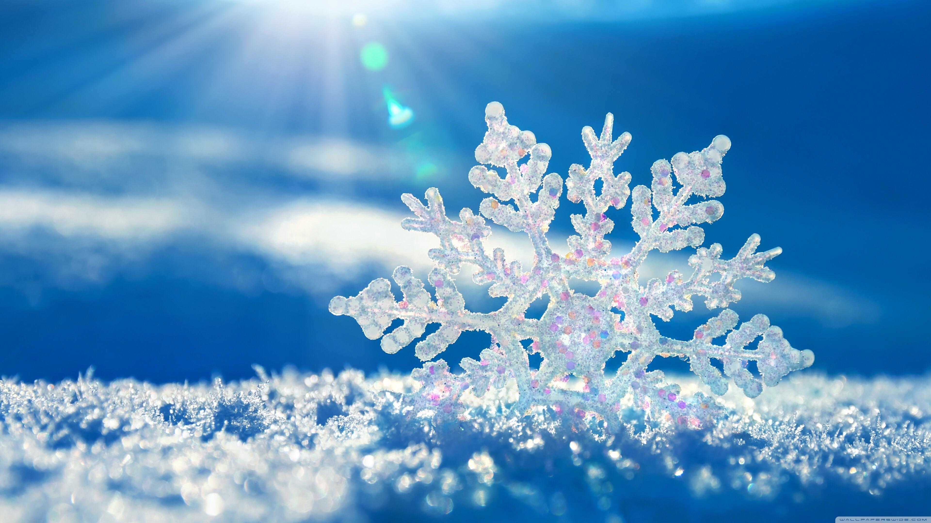 snowflakes-background.jpg