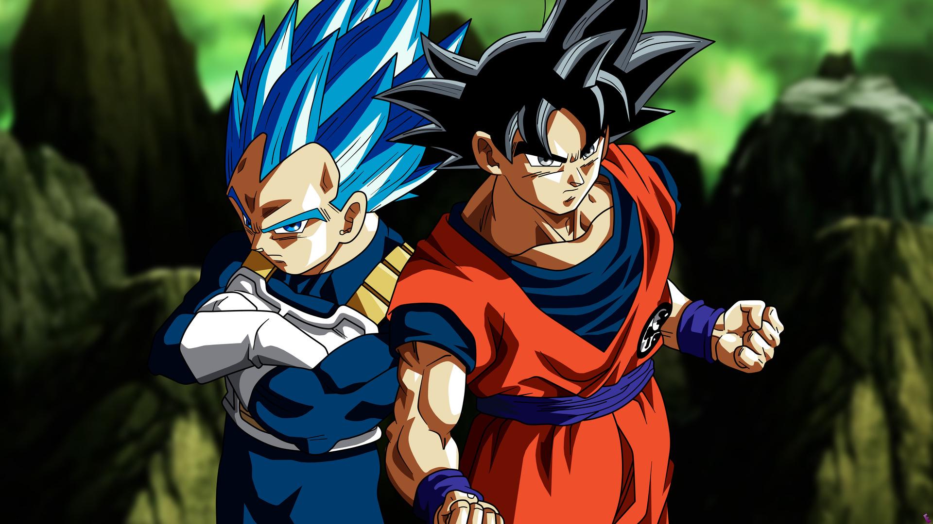 Son Goku Vegeta In Dragon Ball Super 5k