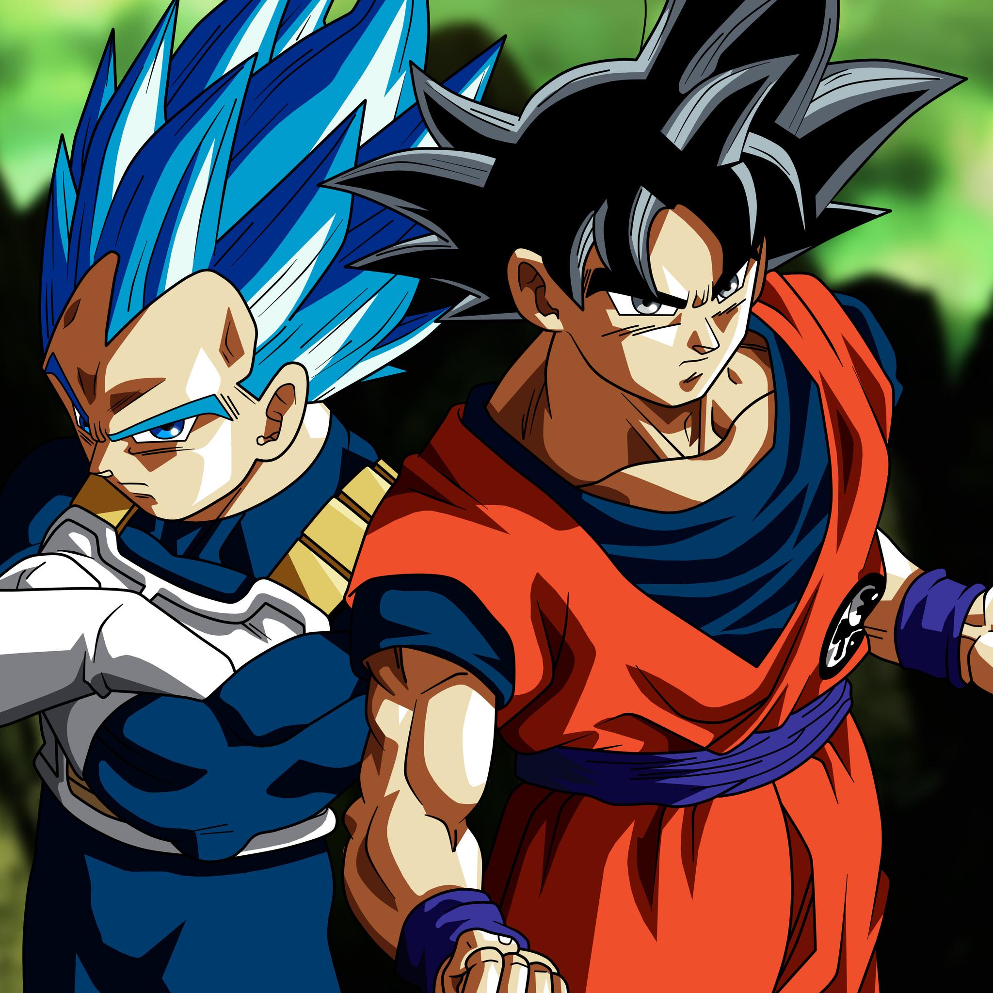 2048x2048 Son Goku Vegeta In Dragon Ball Super 5k Ipad Air