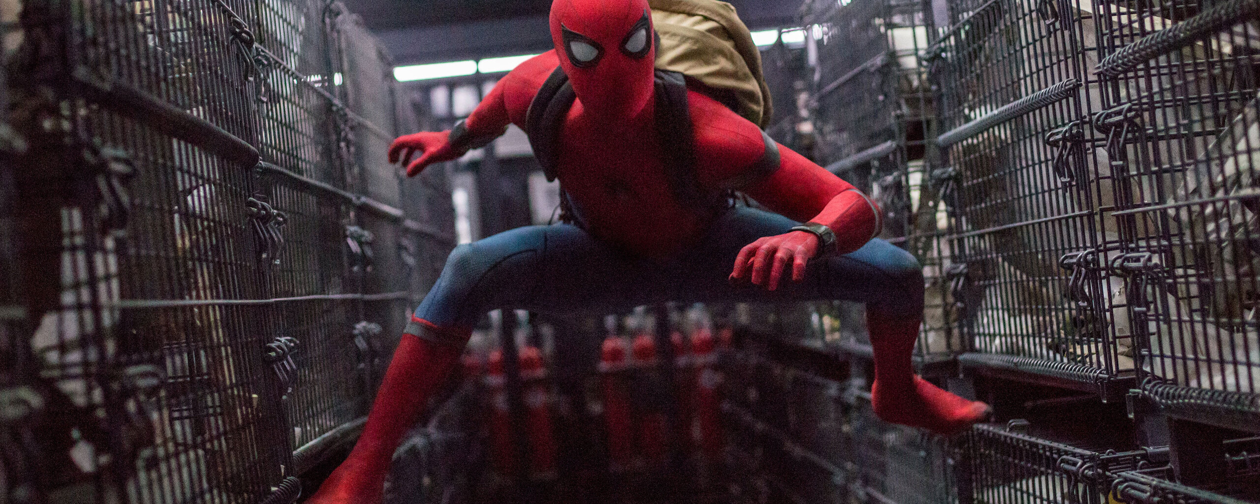 spider-man-homecoming-img.jpg