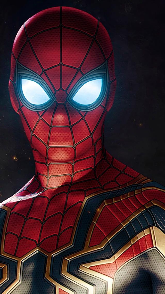 Spiderman Avengers Infinity War Suit Zj