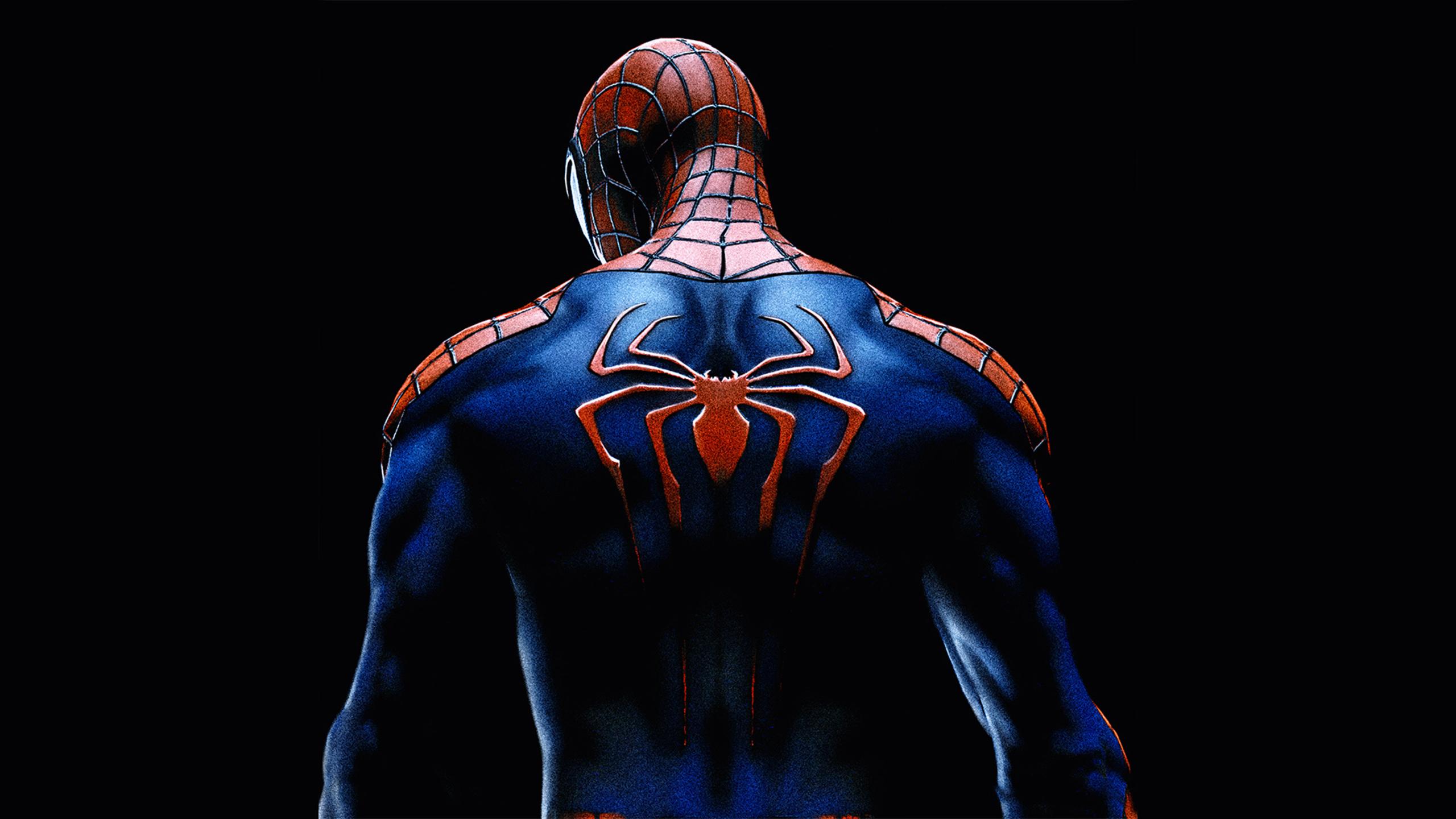 2560x1440 Spiderman Back Spider Logo 1440P Resolution HD ...